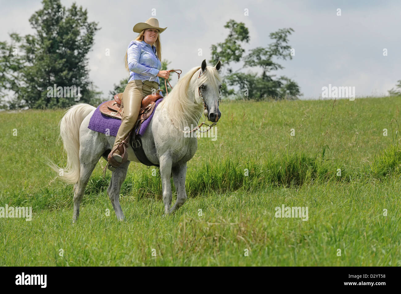 Style Of Horseback Riding High Resolution Stock Photography And Images Alamy