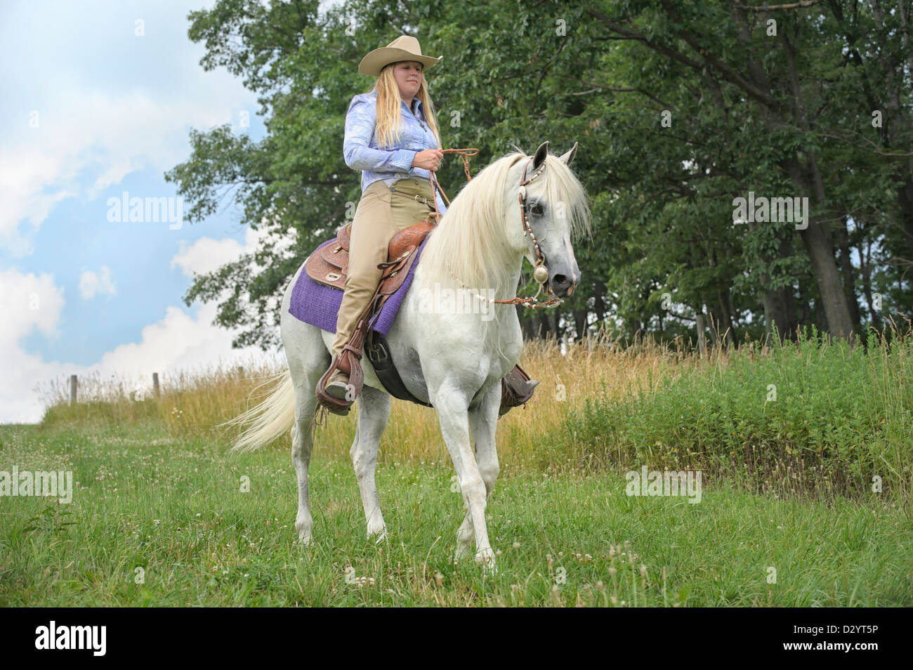 the summer of beautiful white horse All this happened due to mourad this is the story of the beautiful white horse  the garoghlanian family thus maintained their good name too.