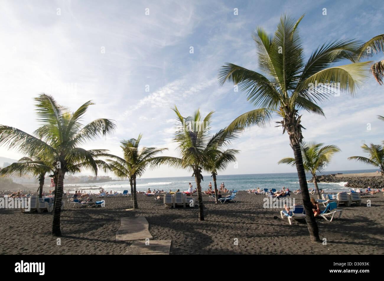 puerto cruz tenerife beach beaches black sand sandy palm tree trees holiday makers holidaymakers sunbathing sunbather - Stock Image
