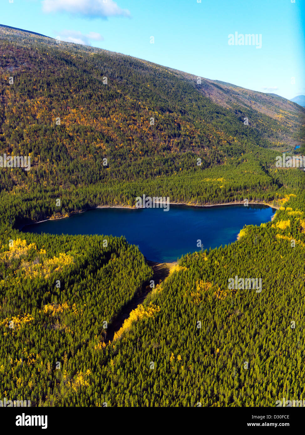 Fall colors in the Yukon Territory in Canada. - Stock Image