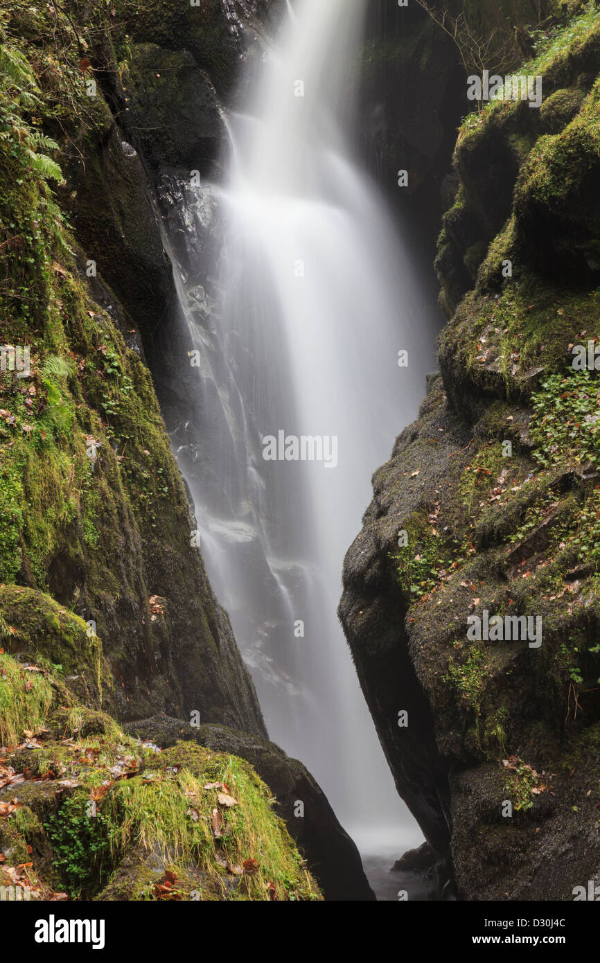 Aira Force waterfall near Ullswater in the Lake District National Park - Stock Image