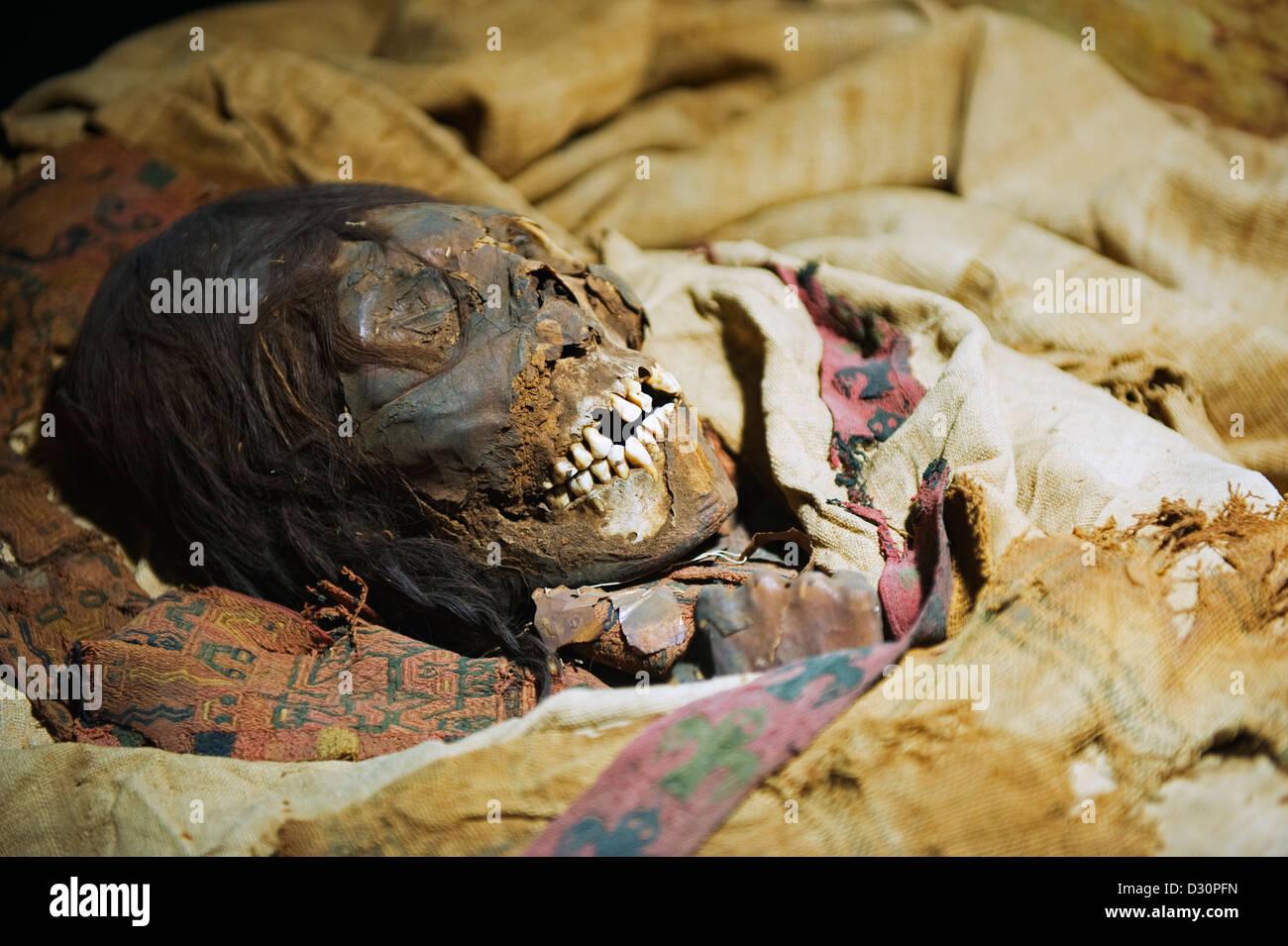 mummy skull at Museo Nacional de Antropologia David J Guzman, Anthropology museum, San Salvador (capital city), - Stock Image