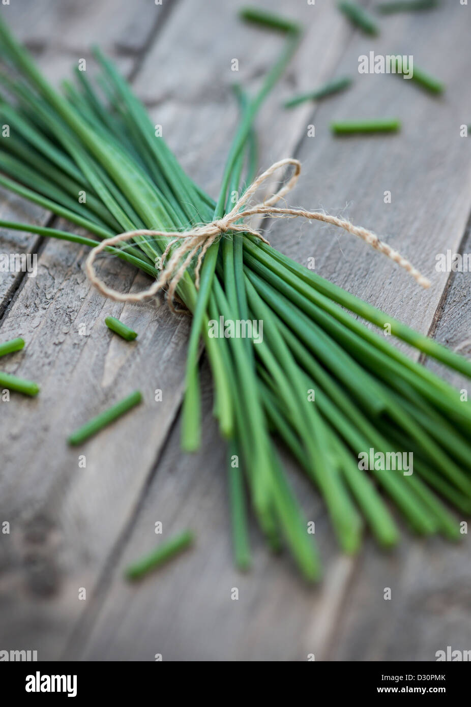 Chives. Stock Photo