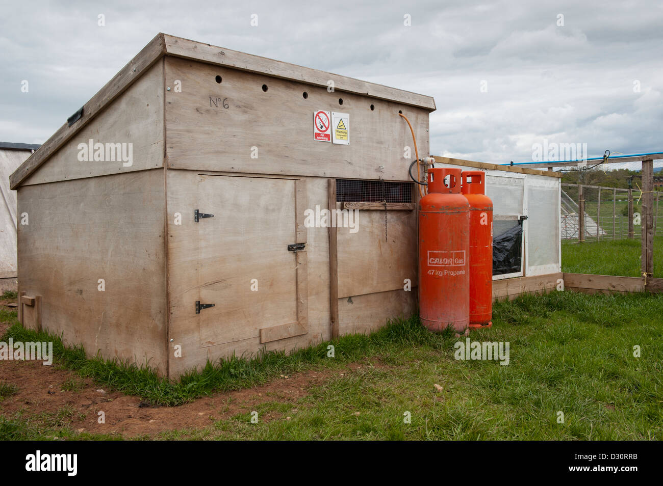 Gamebird rearing shed on a shooting estate. - Stock Image