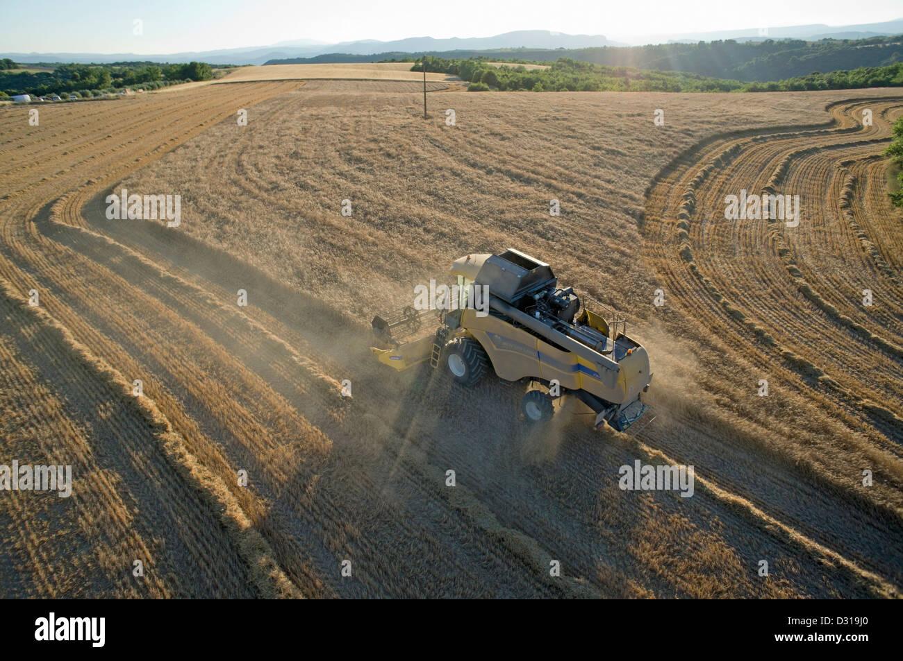 Farmer harvest wheat using combine harvester, South of France - Stock Image