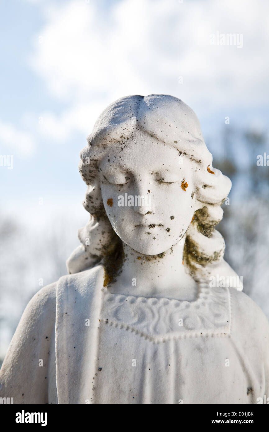 A worn and weathered stone angel bearing moss and lichen on her face. - Stock Image