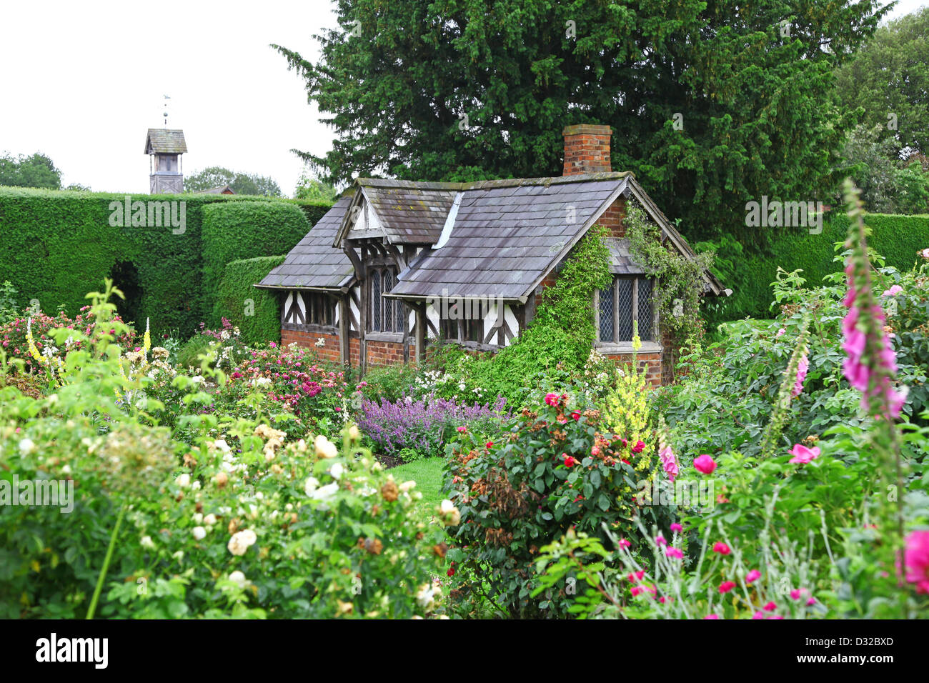 The half-timbered building known as the Tea Cottage in the Shrub Rose Garden at Arley Hall gardens Cheshire England - Stock Image