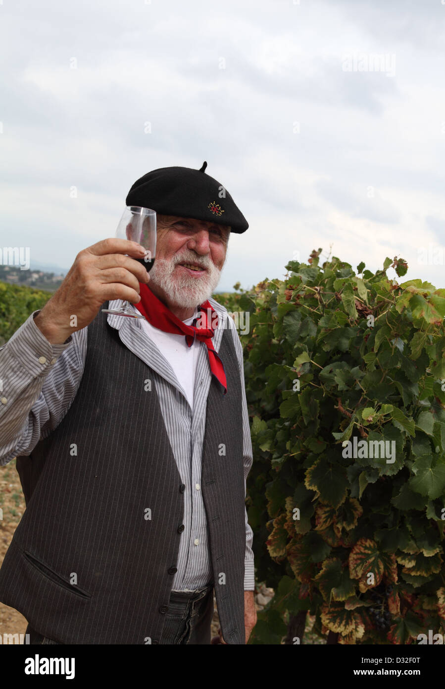 Old Frenchman tasting wine in vineyard St Christol Pays de Lunel Herault Languedoc Roussillon France - Stock Image