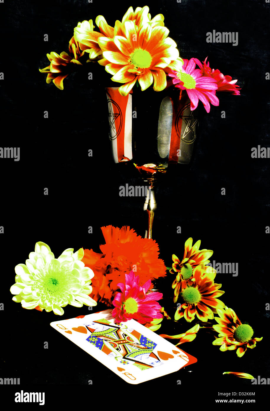 flowers with goblet pentagram and queen of hearts - Stock Image