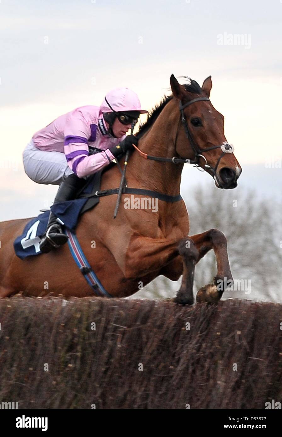 Huntingdon Race Course. Cambridgeshire. 7th February 2013. Winner TRICKY TRICKSTER ridden by Mr S Clements jumps - Stock Image