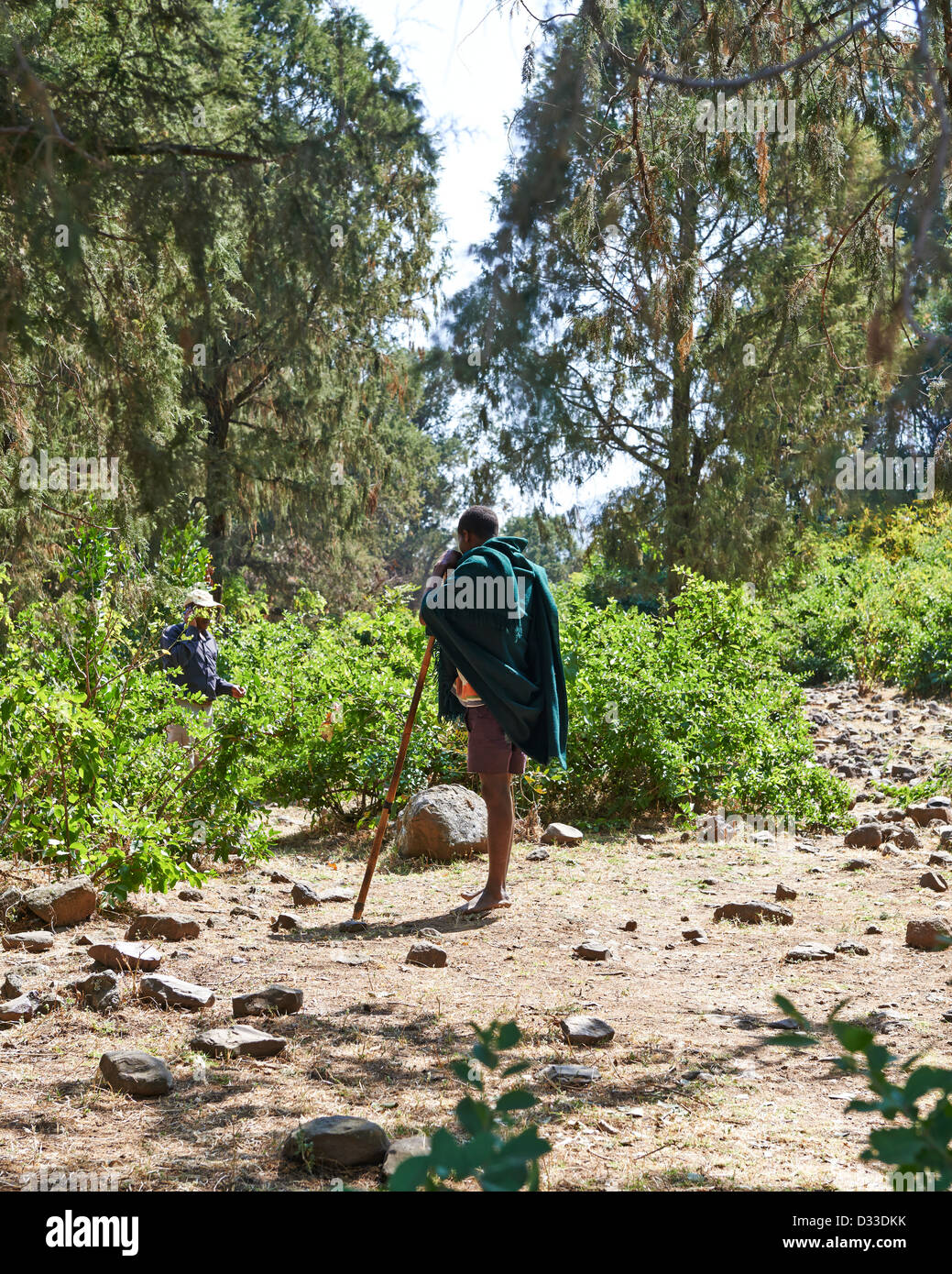 A local man wrapped in green cloth stands stoically with a walking stick before the bush - Stock Image
