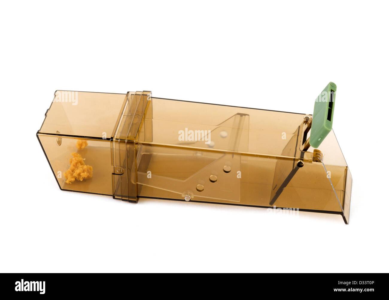 Humane mouse trap - Stock Image