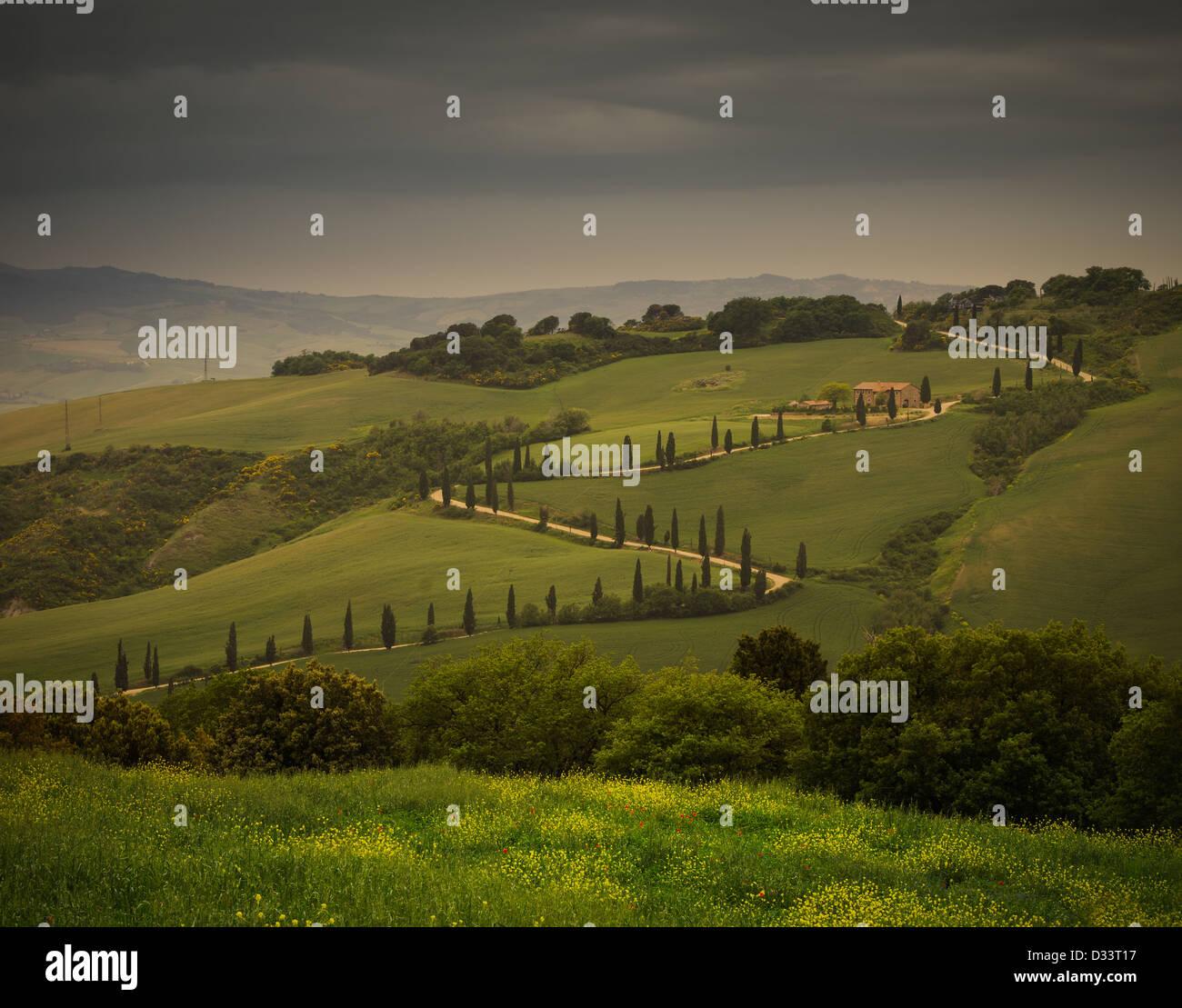 an ordinary tuscany road - Stock Image