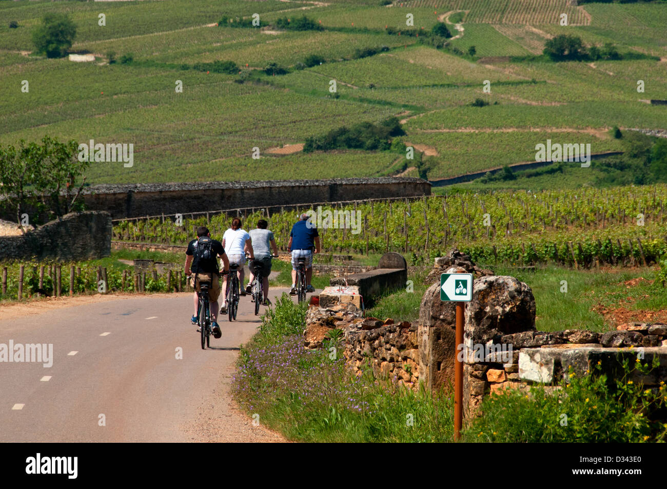Cyclist in Beaune Bourgogne France - Stock Image