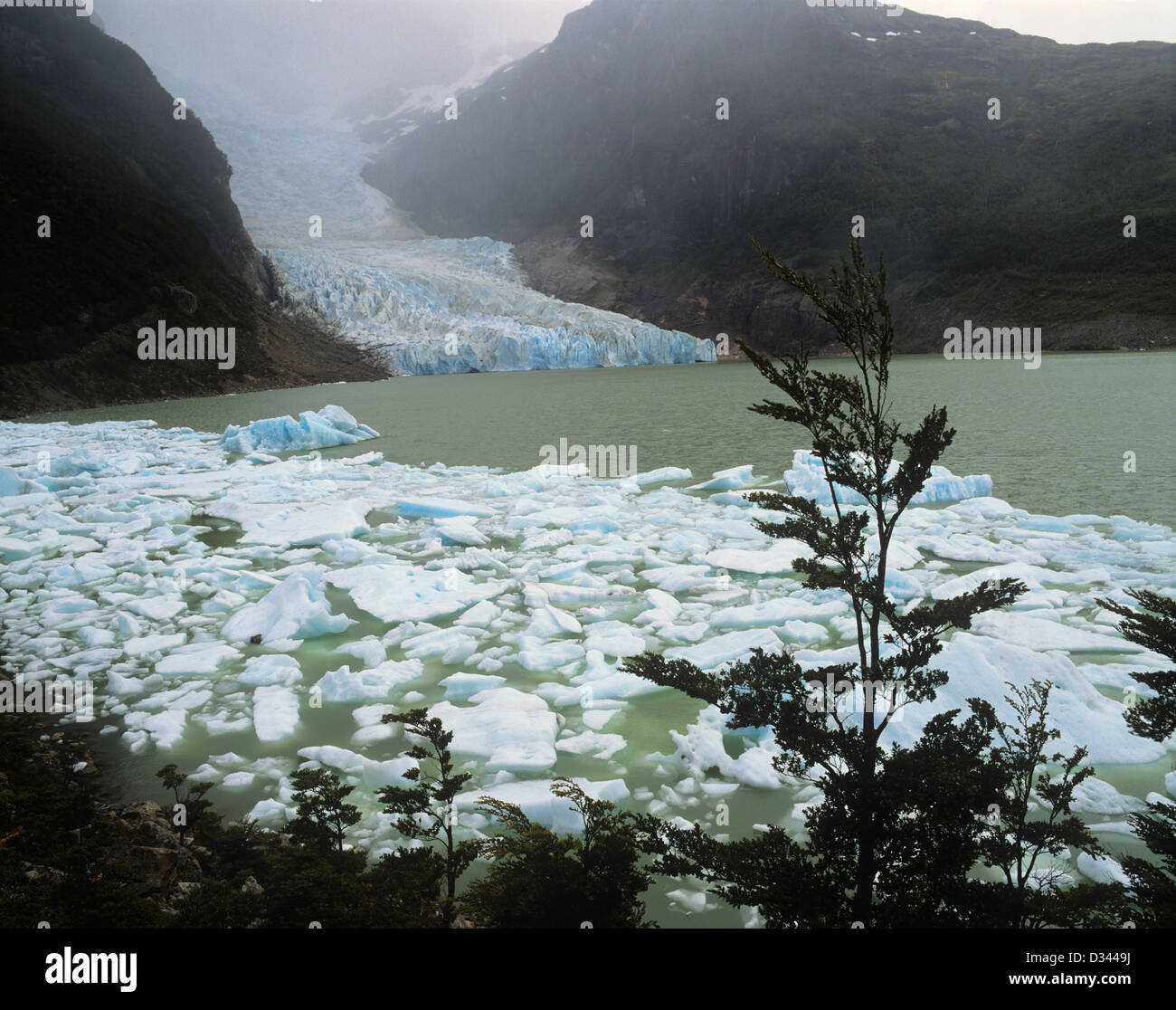 Chile, Region Magallanes, Seno Ultima Esperanza, Last Hope Sound, the Serrano glacier sends icebergs into a lagoon - Stock Image