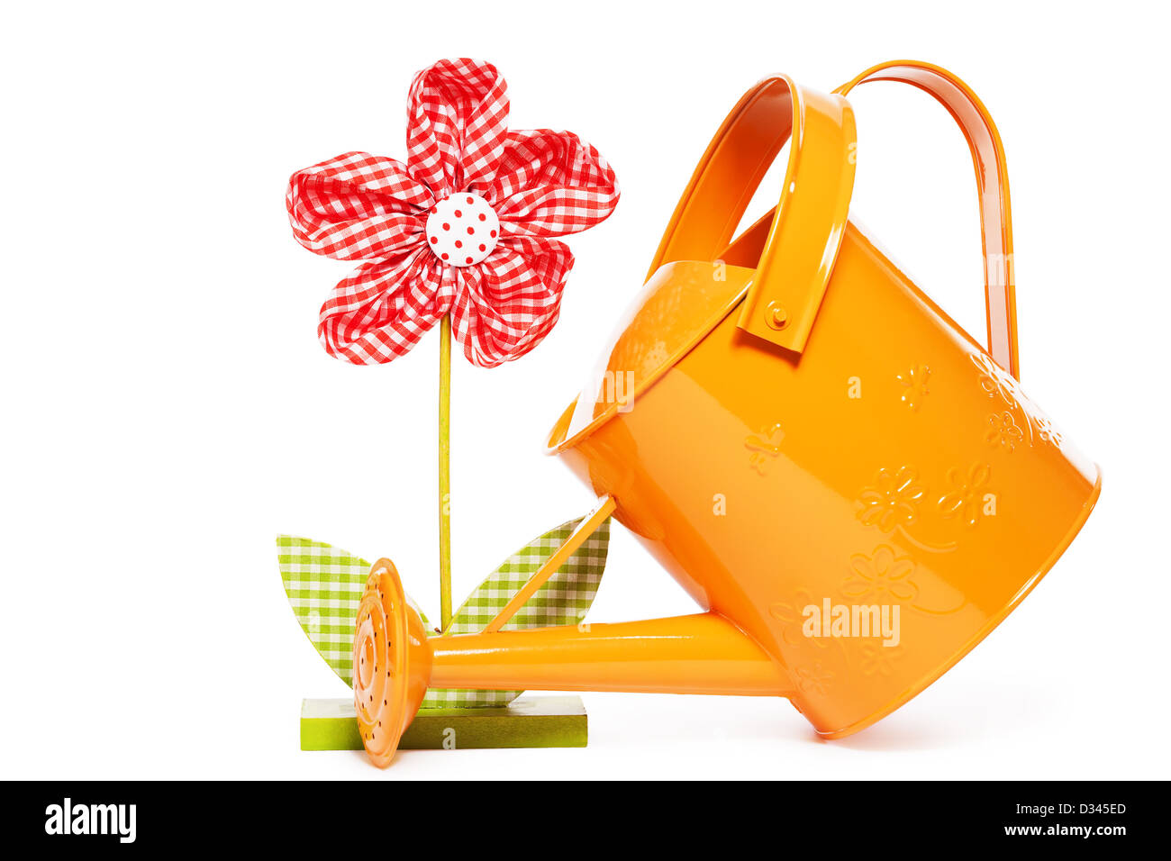 red easter drape flower with a orange watering can on white background - Stock Image