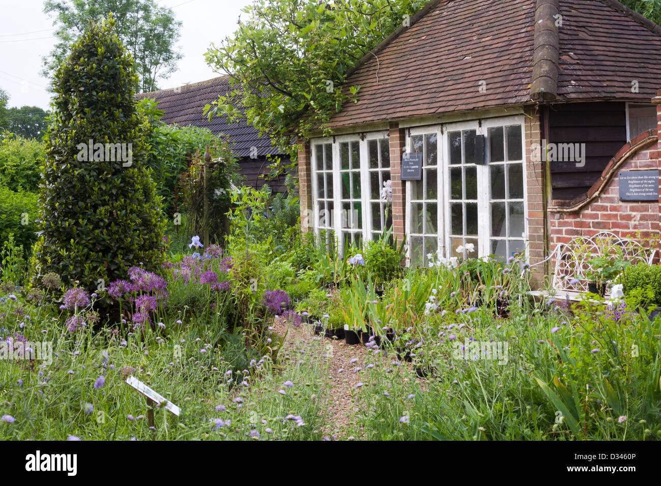 Pathway through spring borders to the house. Stock Photo