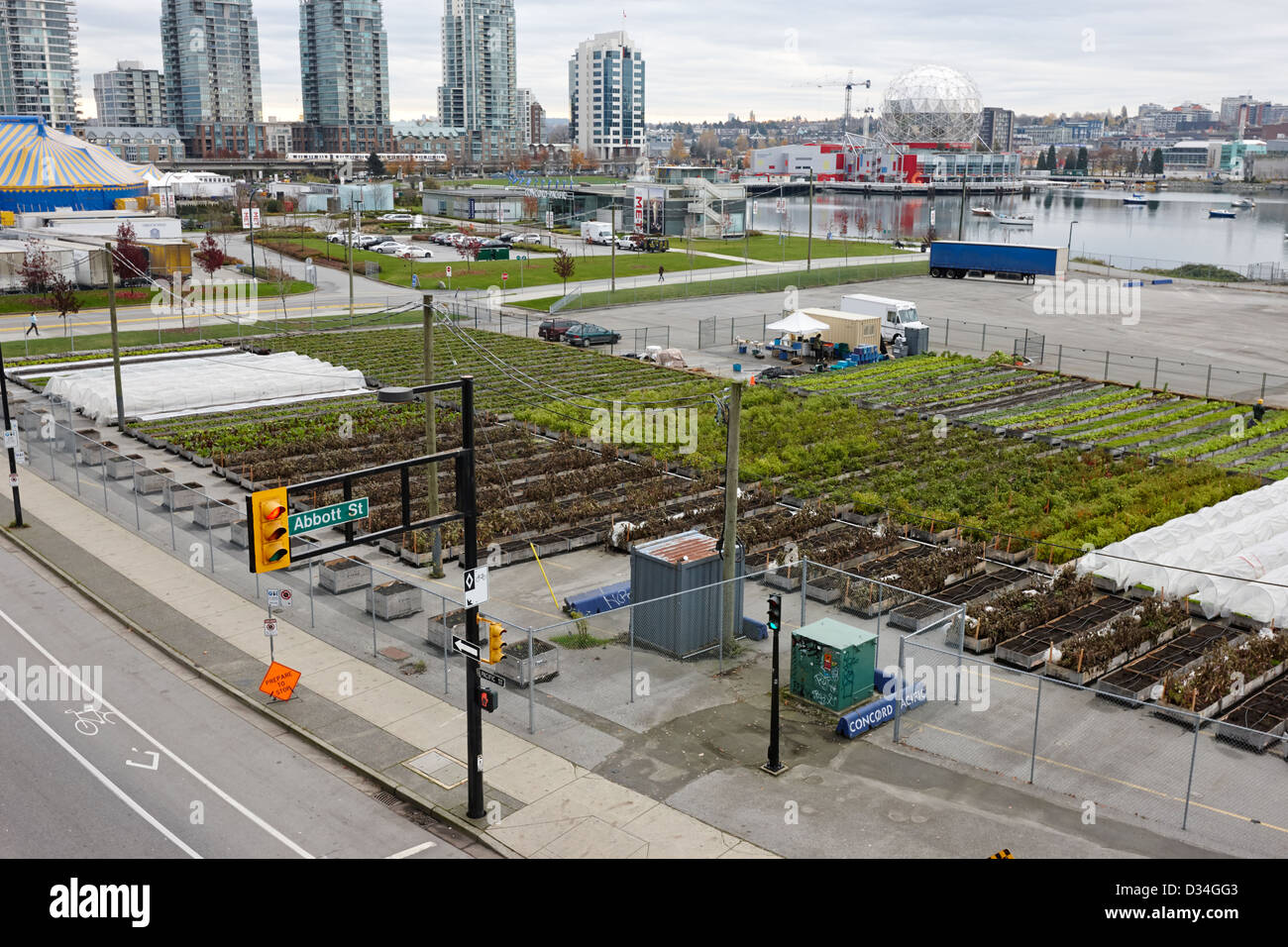 urban farm on unused lot at concord pacific place at false creek Vancouver BC Canada - Stock Image