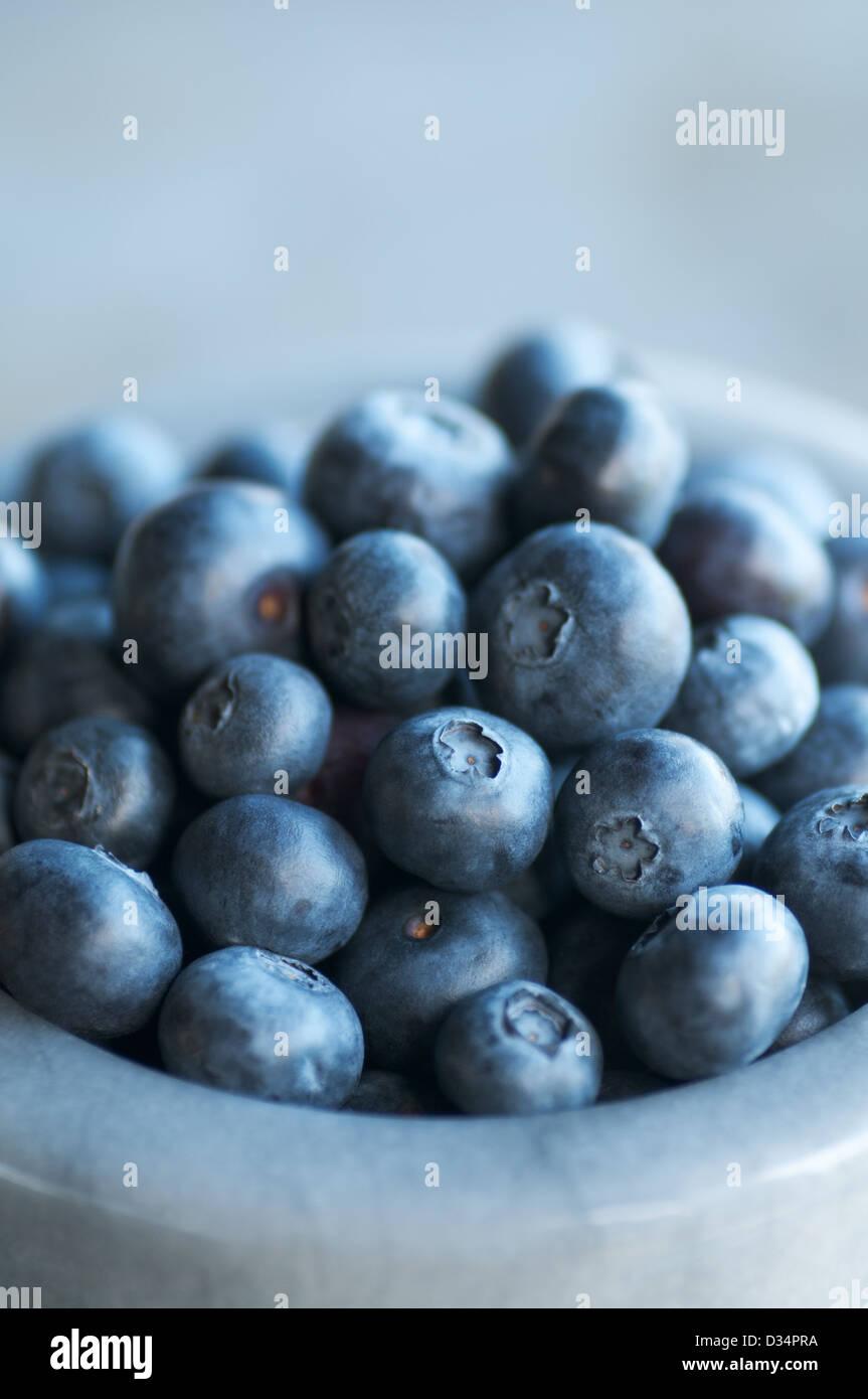 Bowl of beautiful fresh ripe plump blueberries - Stock Image