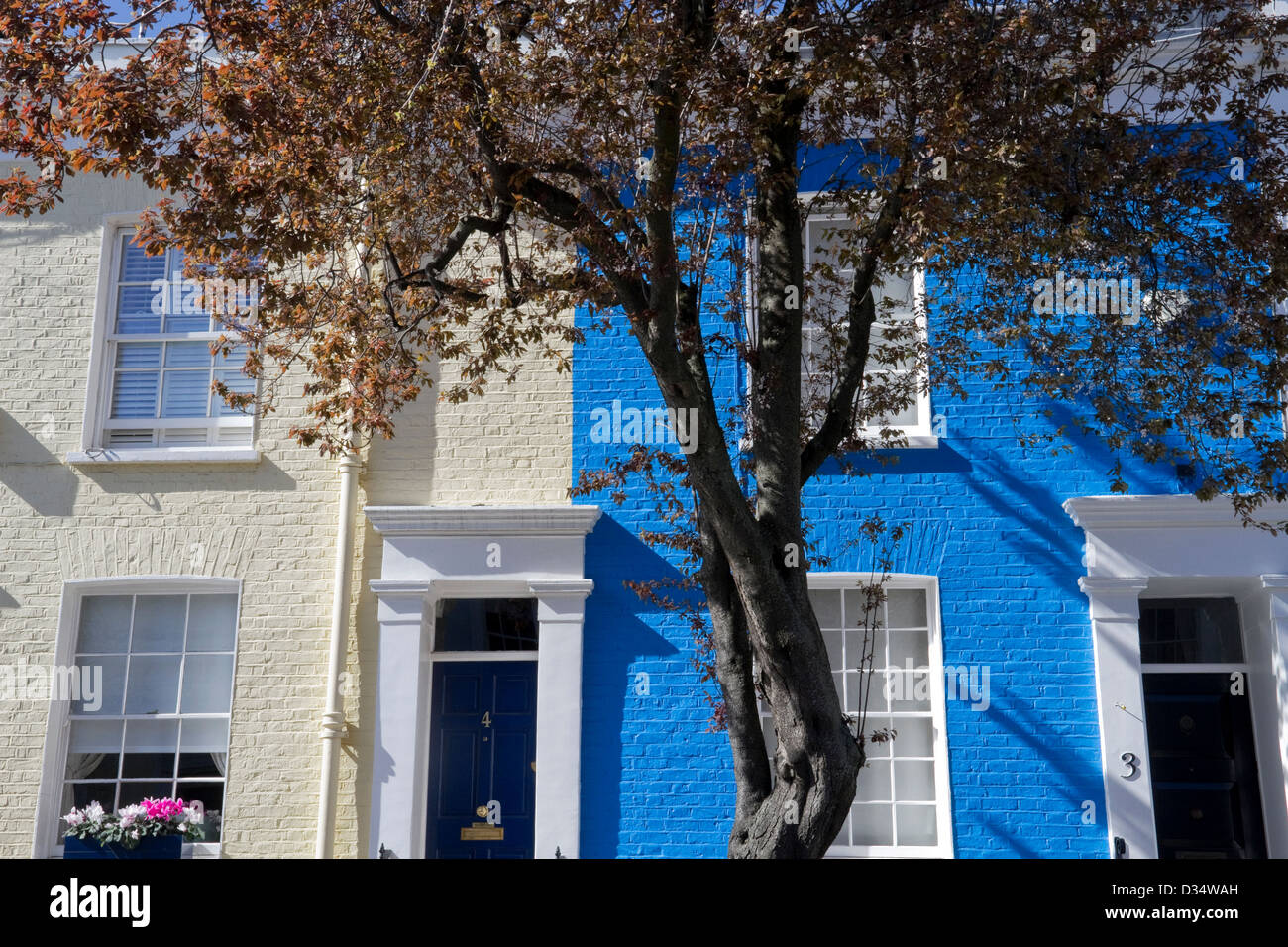 Brightly painted houses in the Royal Borough of Chelsea and Kensington Stock Photo
