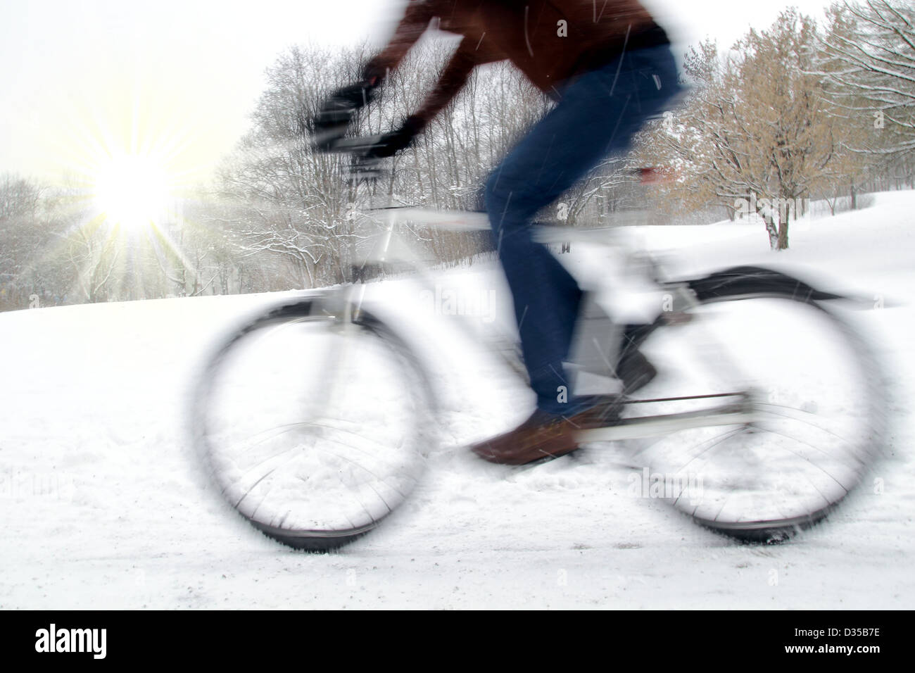 Dynamic cyclist with motion blur and nice winter sun - Stock Image