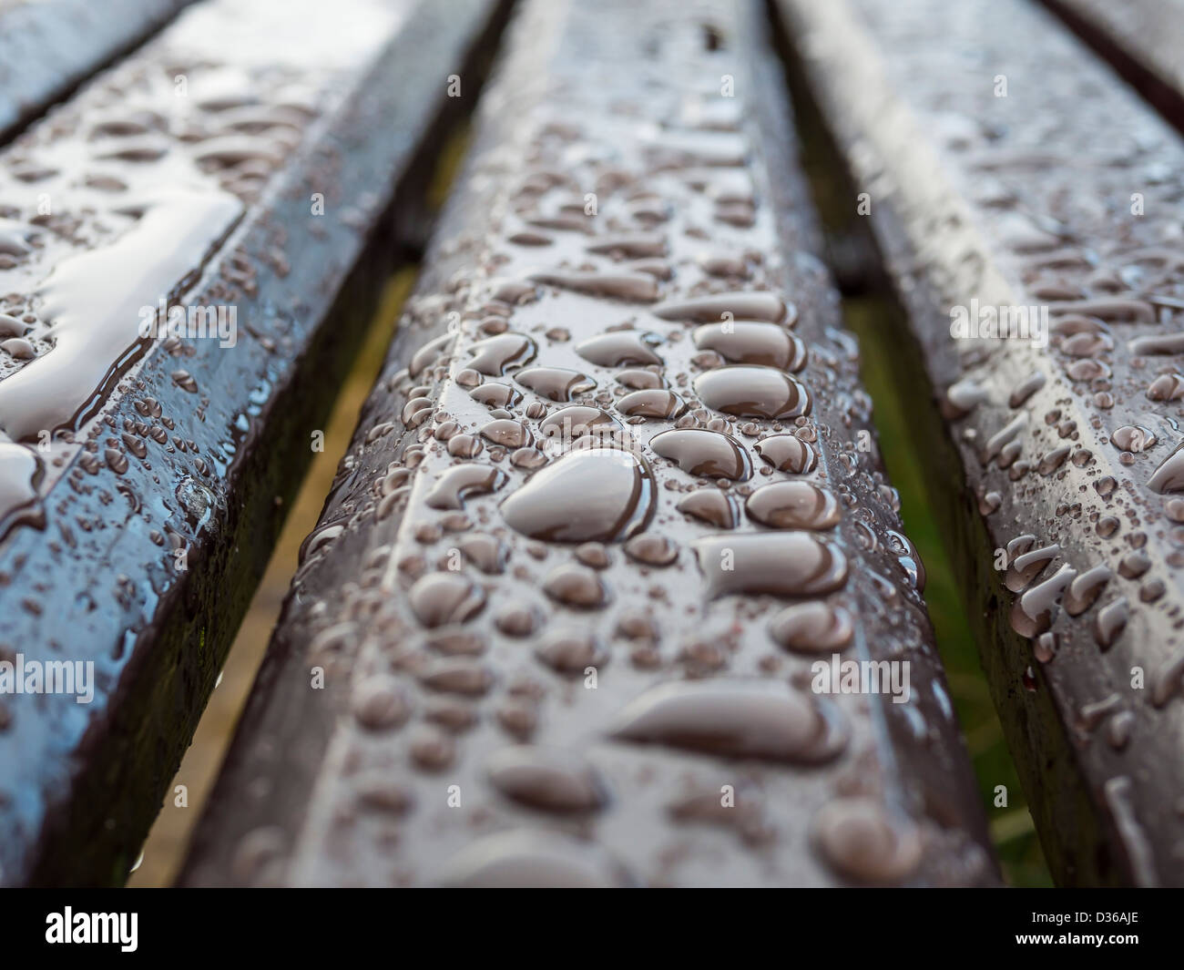 Rain drops on a park bench in Scotland. - Stock Image