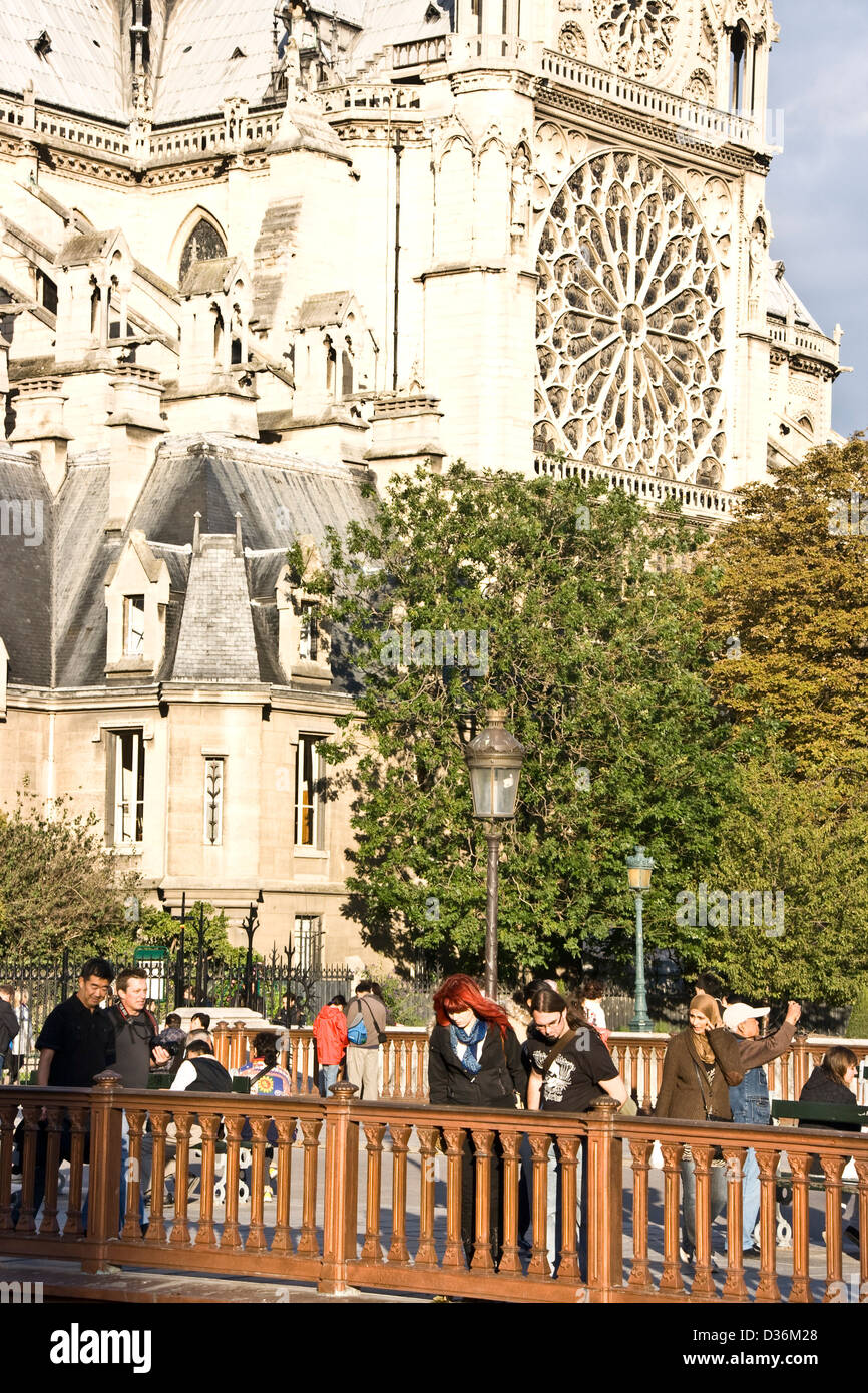 Dusk sunset at Pont au Double southern facade rose window Notre Dame Cathedral Paris France Europe - Stock Image