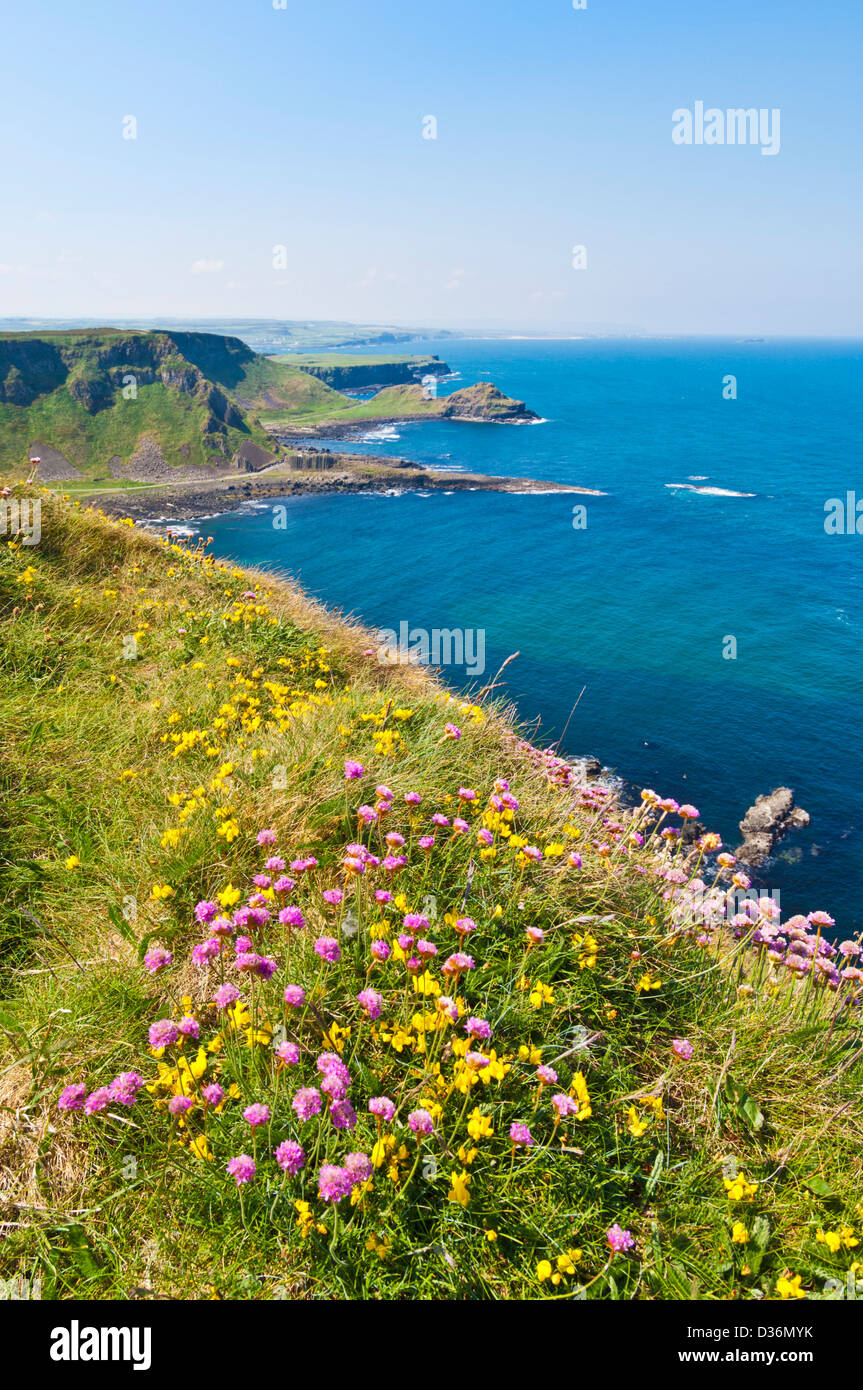 distant view of giants causeway from North Antrim causeway coast way County Antrim Northern Ireland GB UK EU Europe - Stock Image