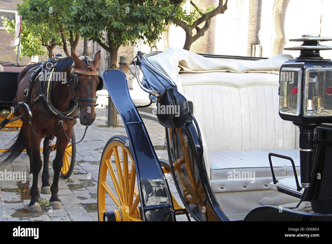 Horse in Seville - Stock Image
