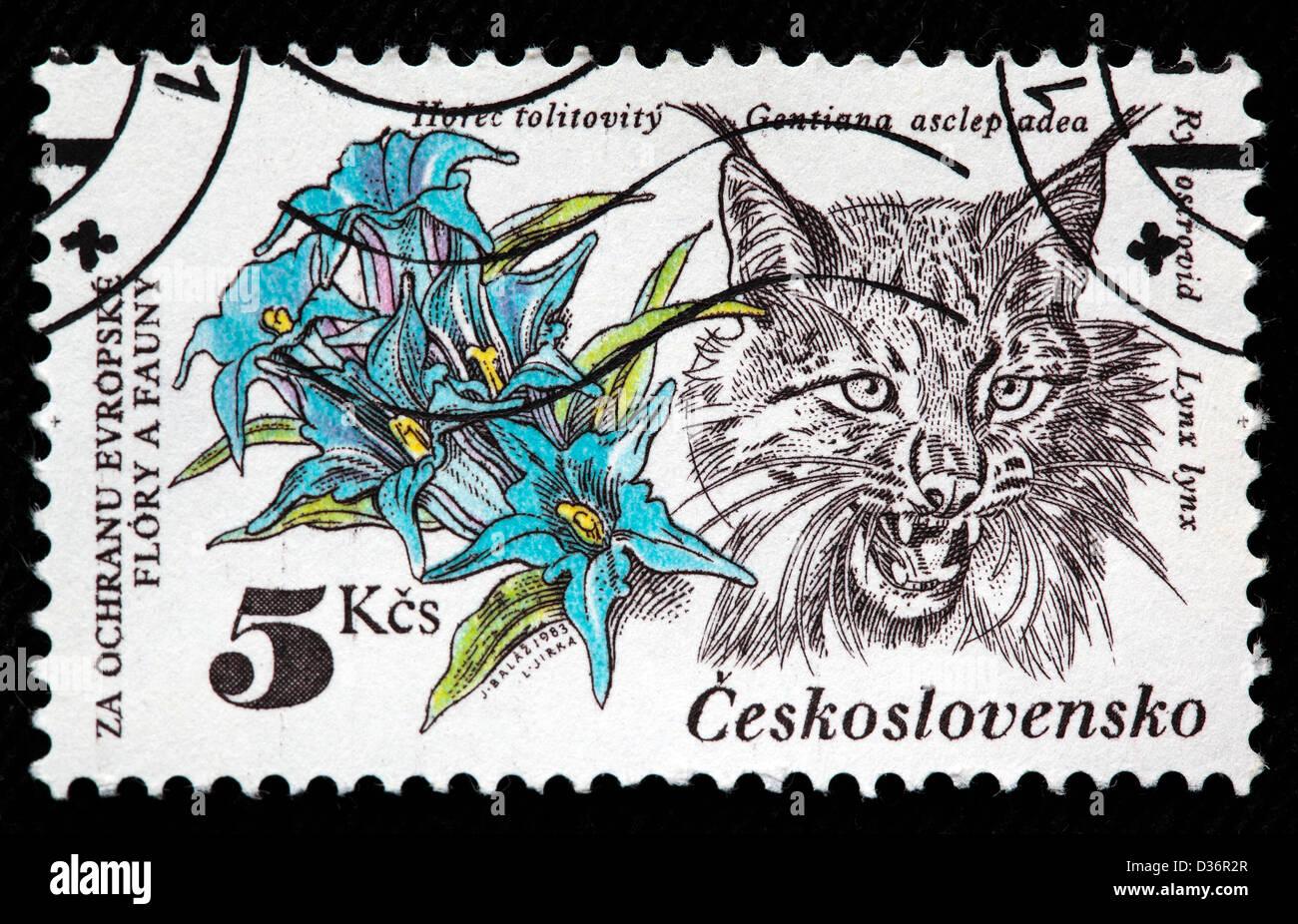 Gentians, lynx, postage stamp, Czechoslovakia, 1983 - Stock Image