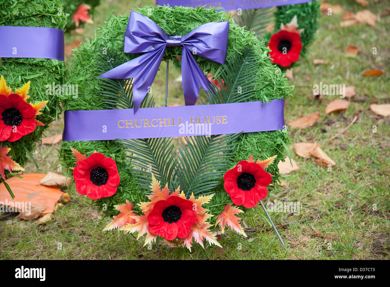 Remembrance Day wreath with poppies laying in grass - Stock Image