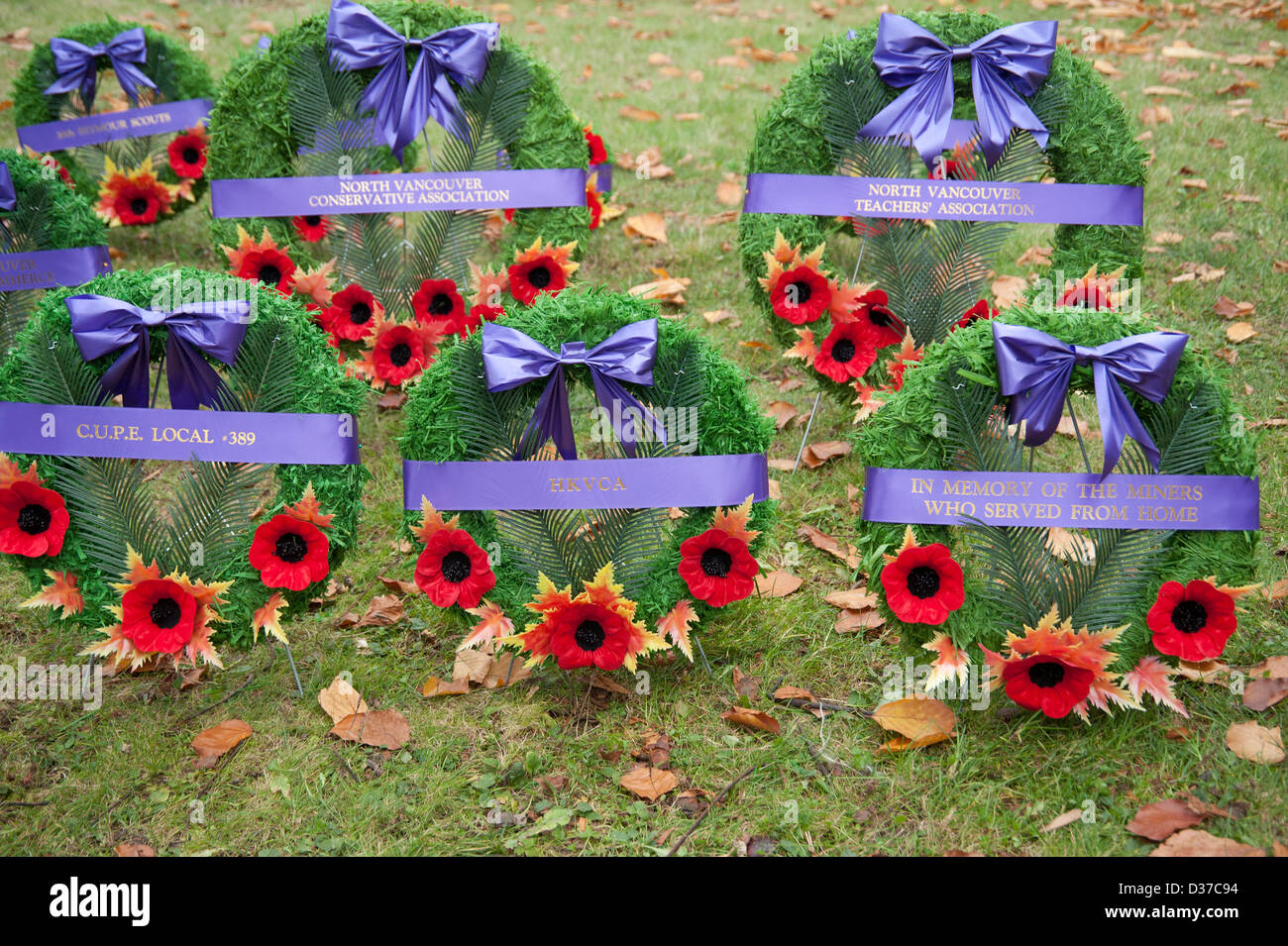 Remembrance Day wreaths with poppies laying in the grass - Stock Image