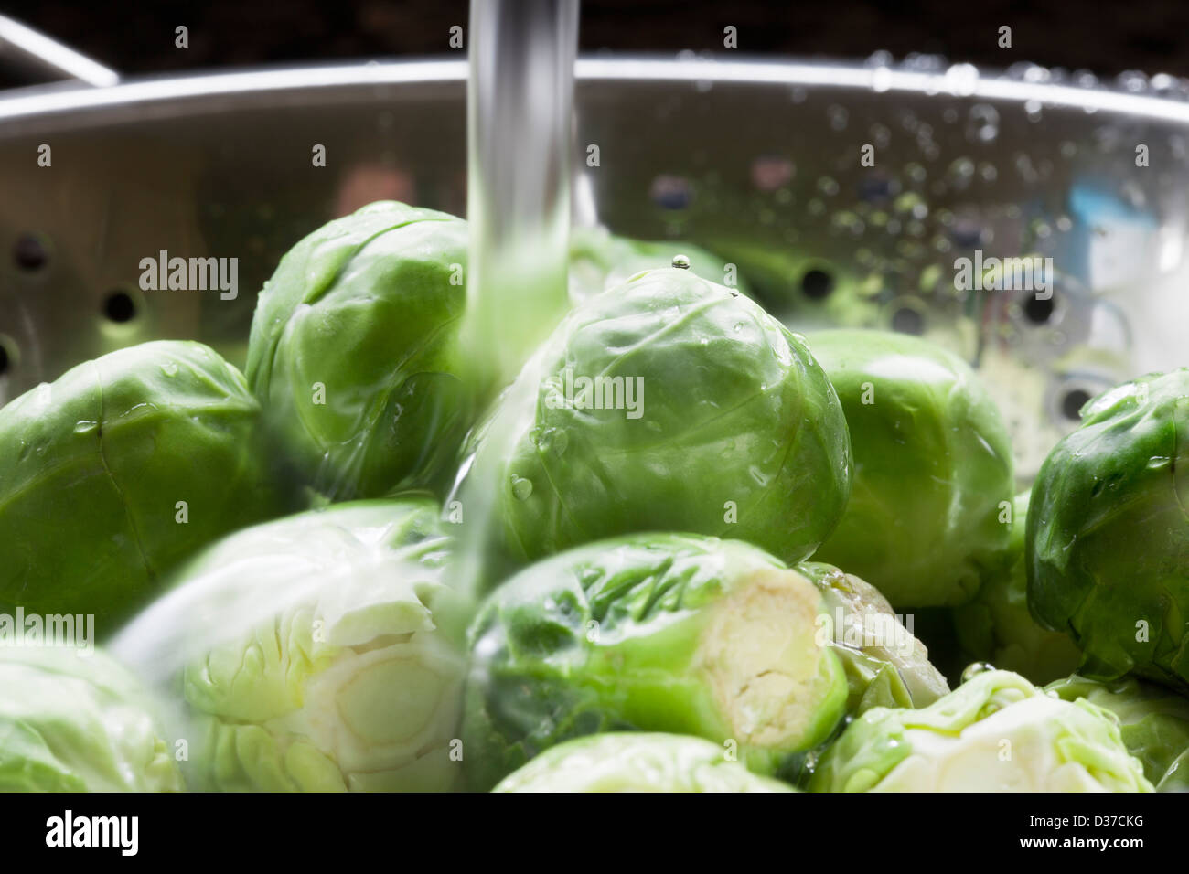 Close up of brussels sprouts being rinsed in colander - Stock Image