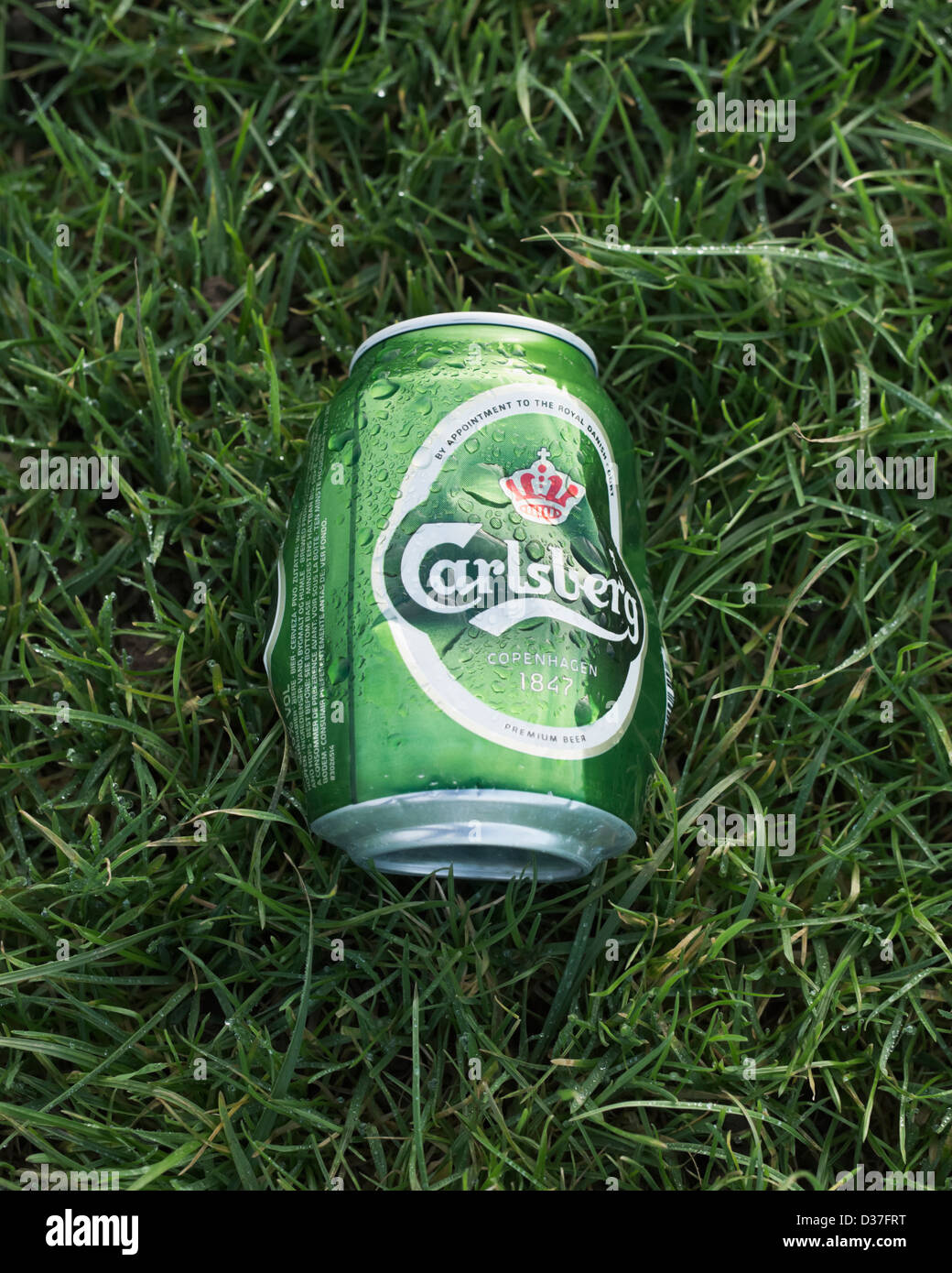 Carlsberg aluminium beer can. FOR EDITORIAL USE ONLY. - Stock Image