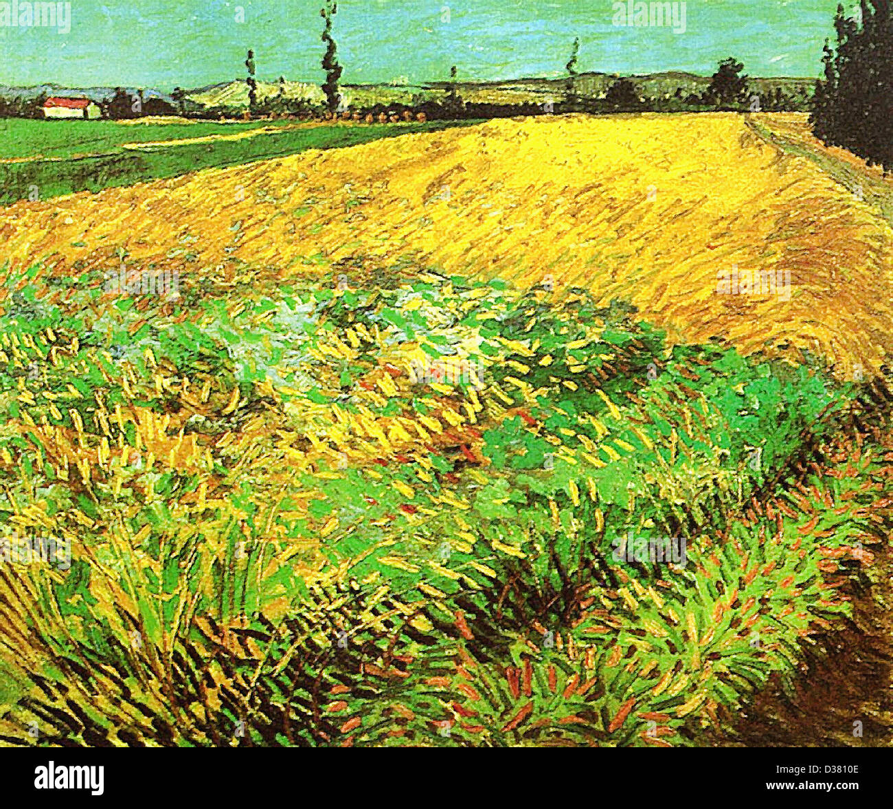 Vincent van Gogh, Wheat Field with the Alpilles Foothills in the Background. 1888. Post-Impressionism. Oil on canvas. - Stock Image