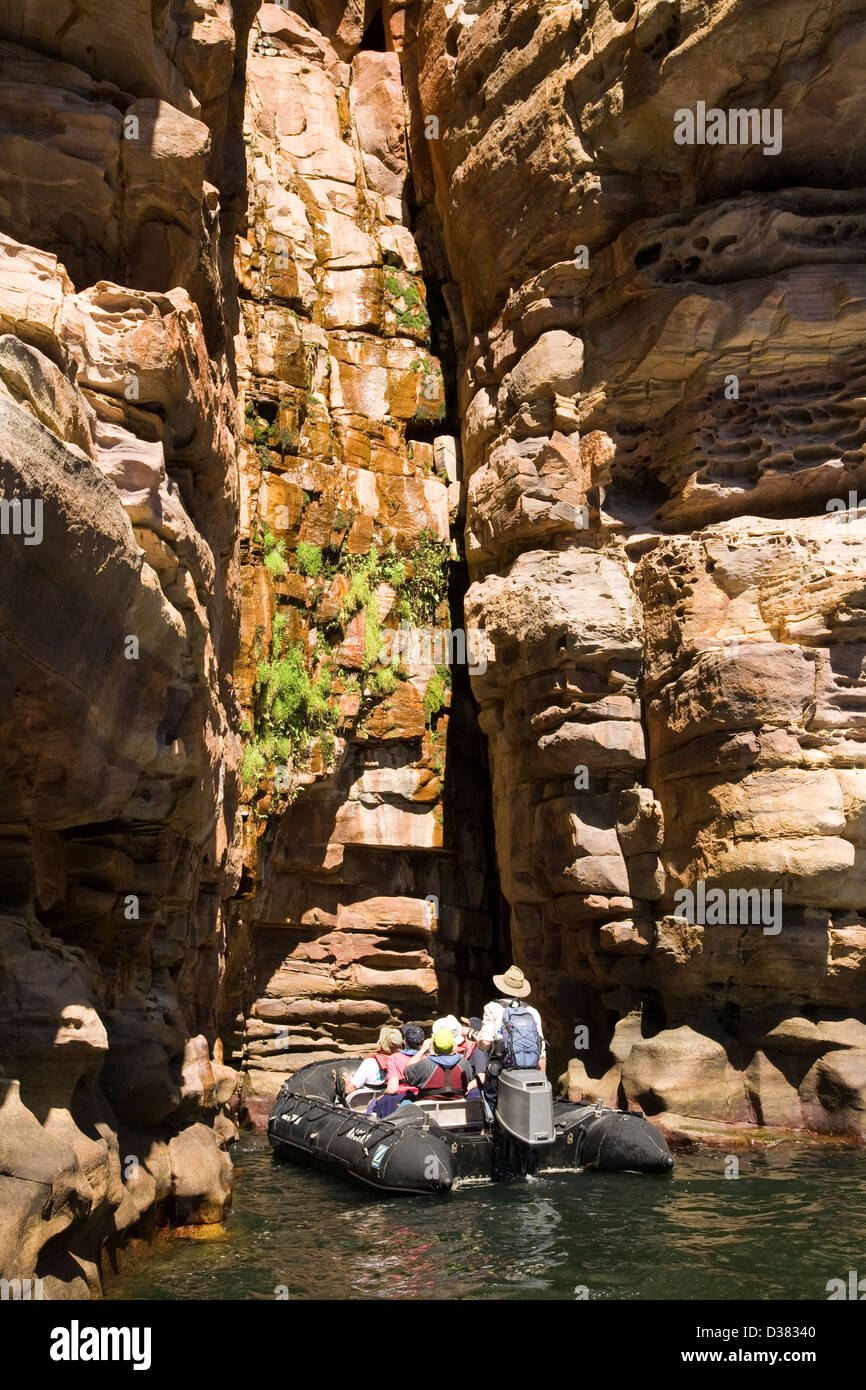 Water seeping from crevices sandstone walls lining the King George River nourish a variety of plant life, Kimberley - Stock Image