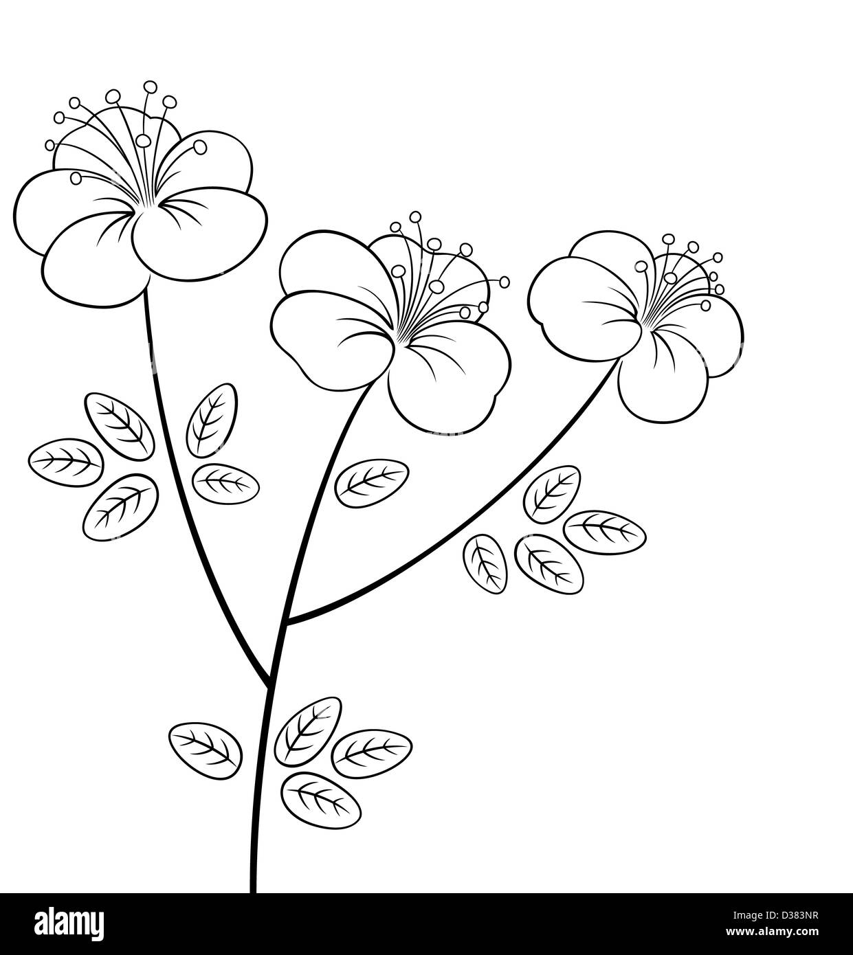 3b3f226a693 Flower Line Black and White Stock Photos   Images - Alamy