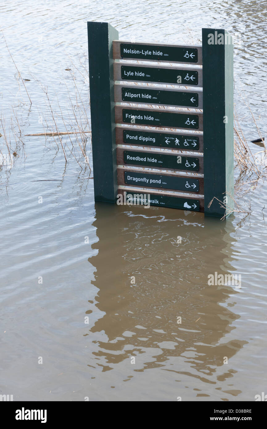 A flooded sign at Welney Wildfowl wetlands Trust Centre Norfolk UK. River levels were extra high flooding paths - Stock Image
