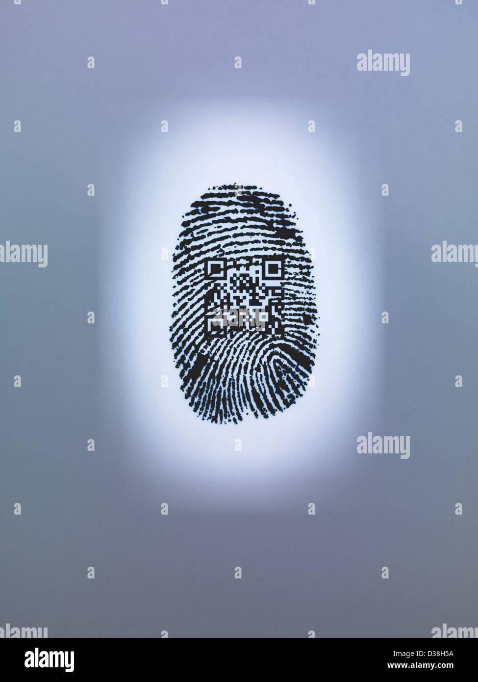 QR code in finger print - Stock Image