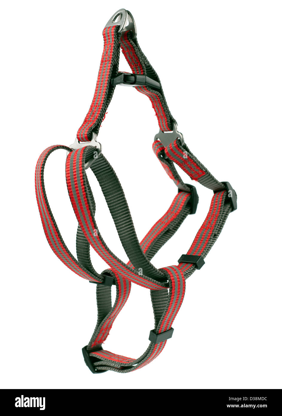 High vision red and grey dog harness size small 18' 26' 46 to 66 cms - Stock Image
