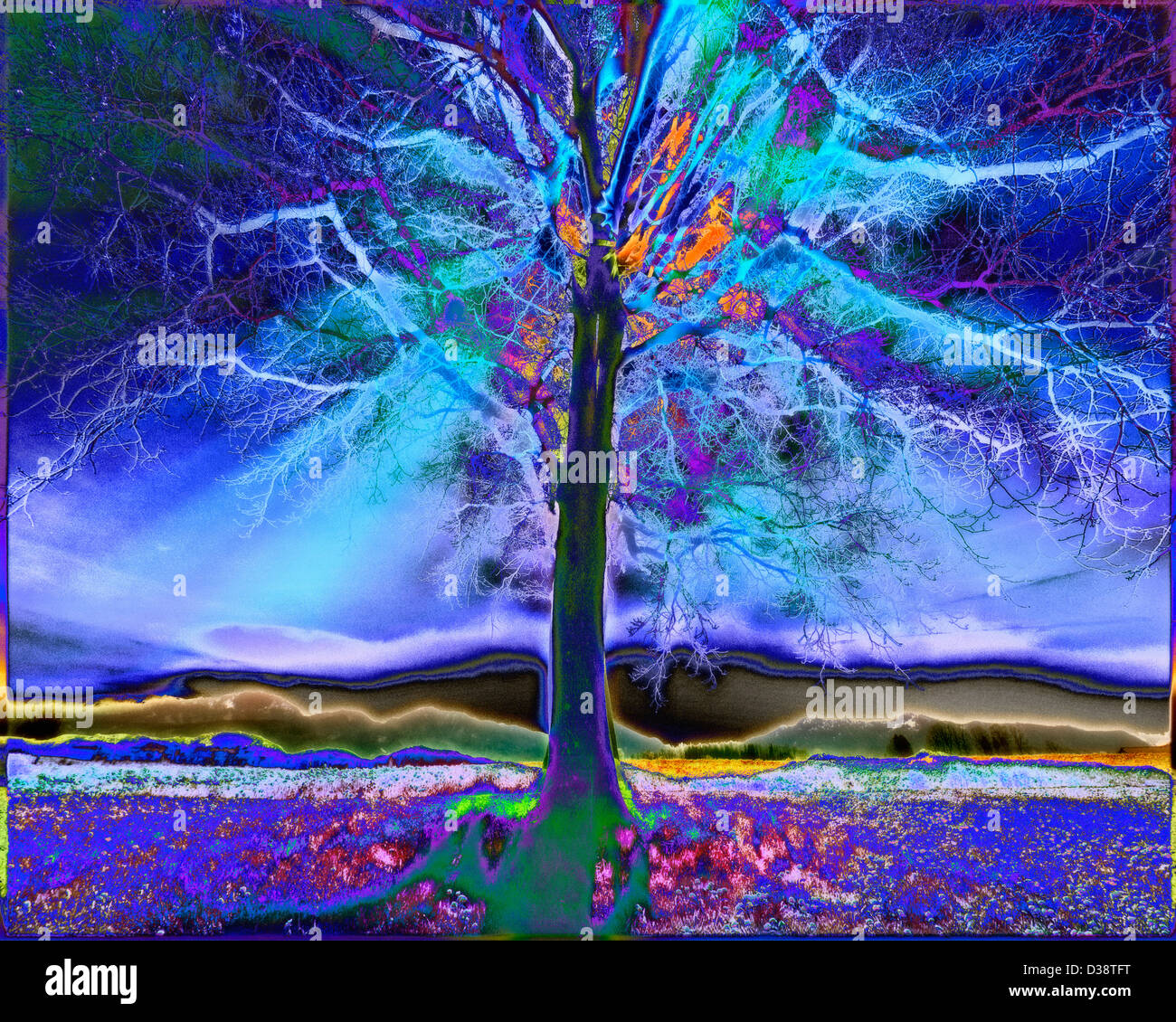 DIGITAL ART: Lone Tree - Stock Image