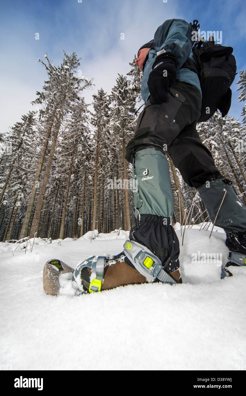 Close up of hiker wearing snowshoes on feet while snowshoeing in forest in deep powder snow in winter Stock Photo