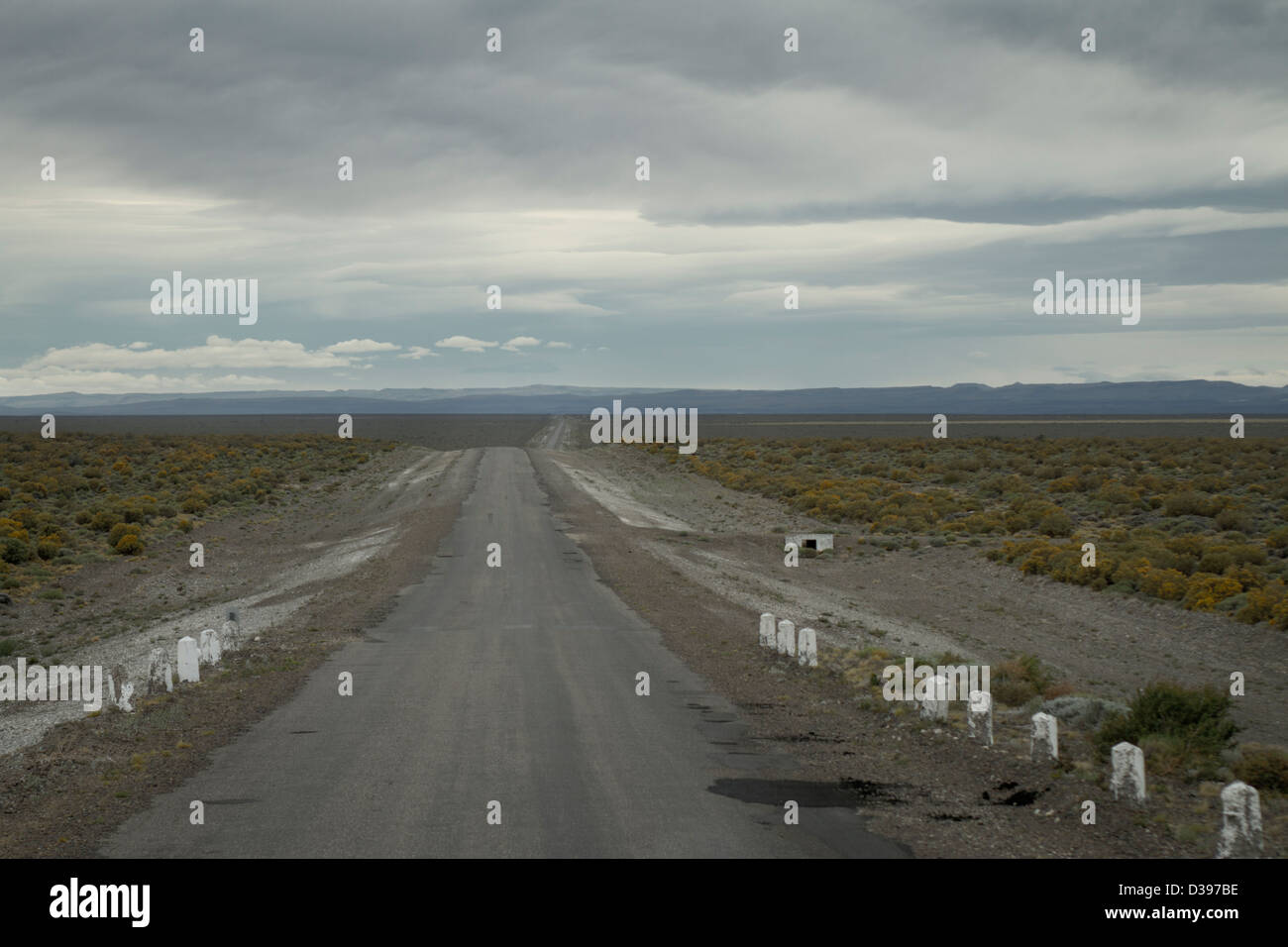 Argentina's Ruta 40 stretches into the horizon - Stock Image
