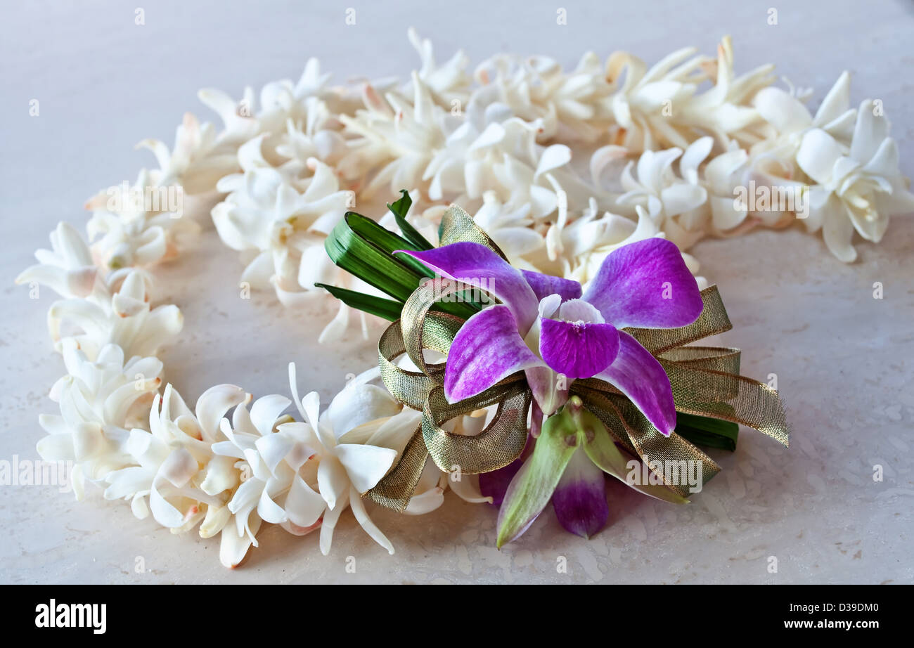Tropical still life is a hawaii lei made of white tuberose flowers tropical still life is a hawaii lei made of white tuberose flowers a purple orchid and ribbon it is lying on a light surface izmirmasajfo