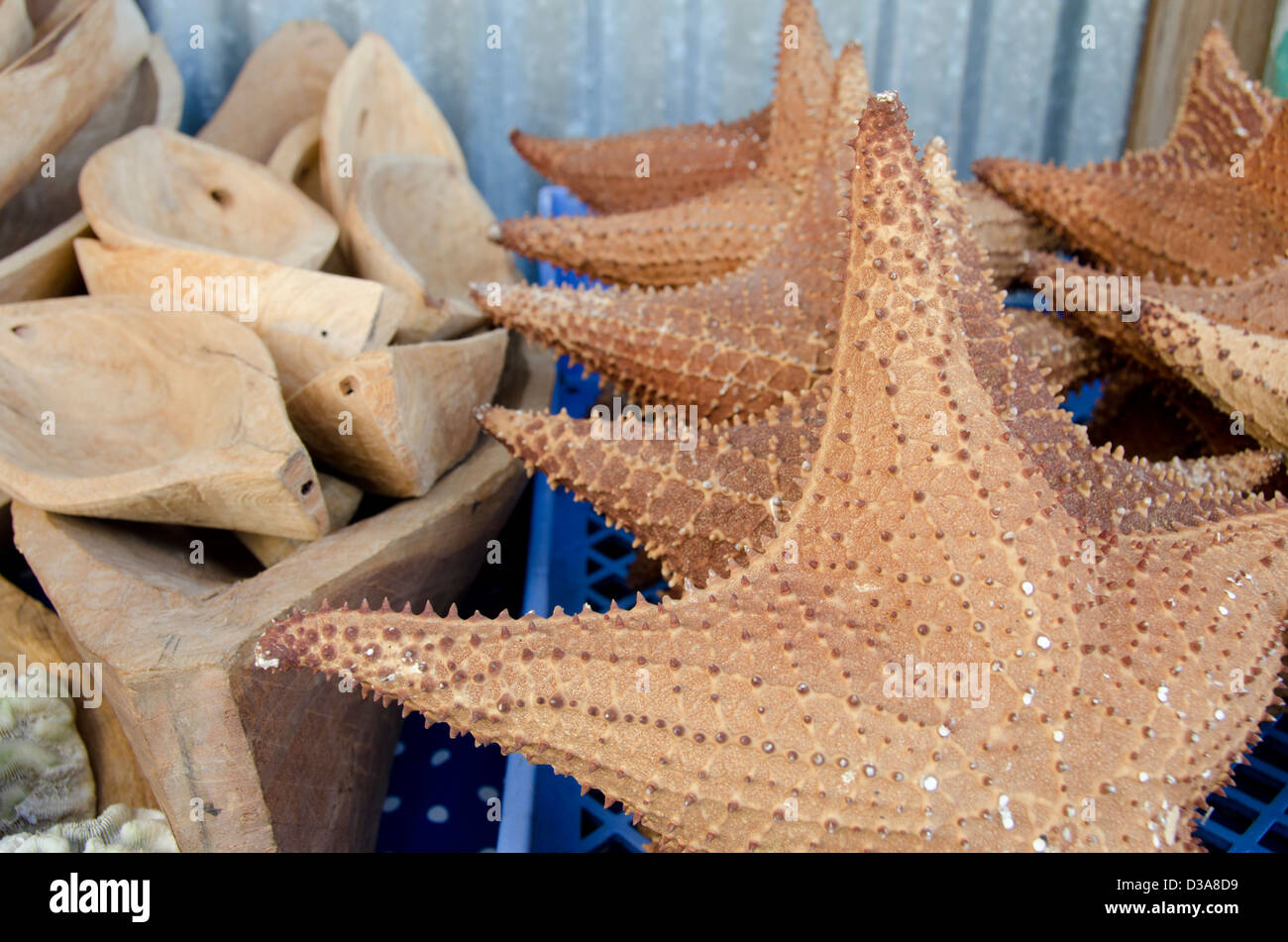 Guatemala, Livingston. Souvenir starfish & hand carved small wooden boats, typical vendor stand along the coast. - Stock Image