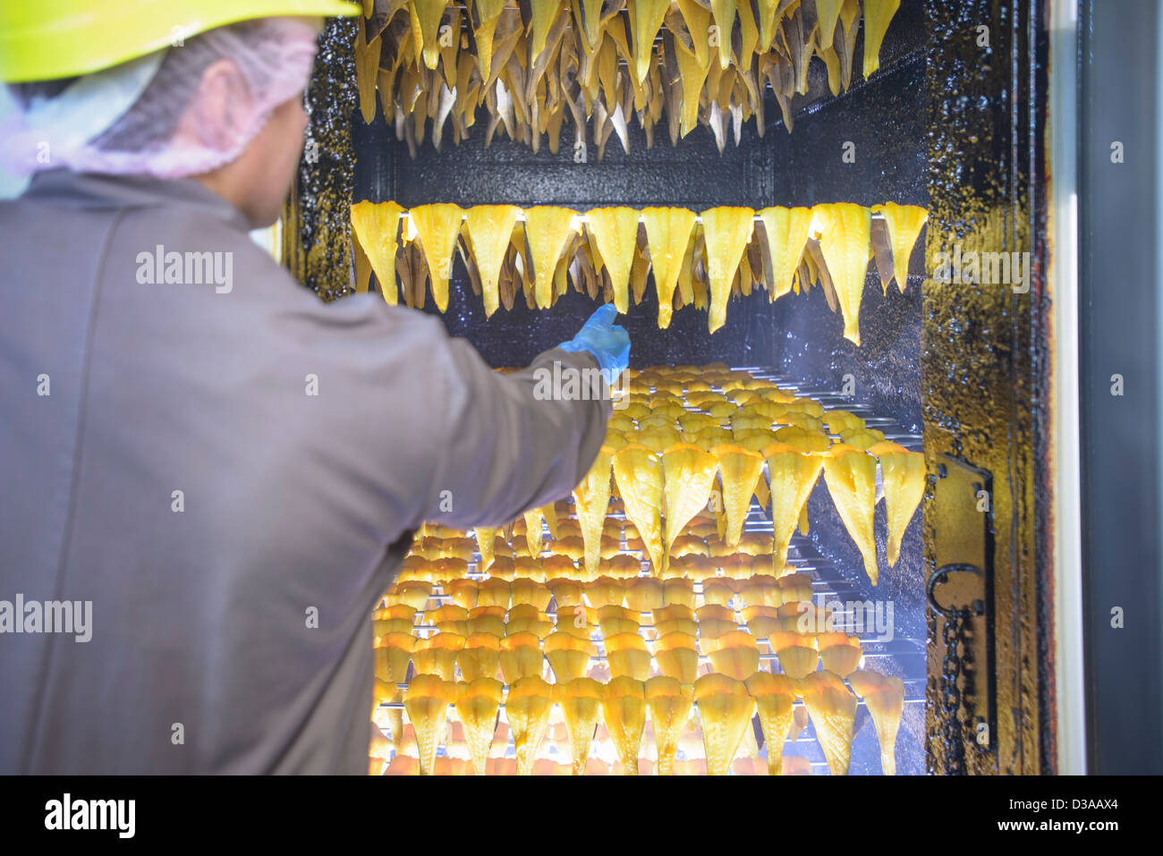 Worker inspecting smoked haddock fillets in food factory - Stock Image