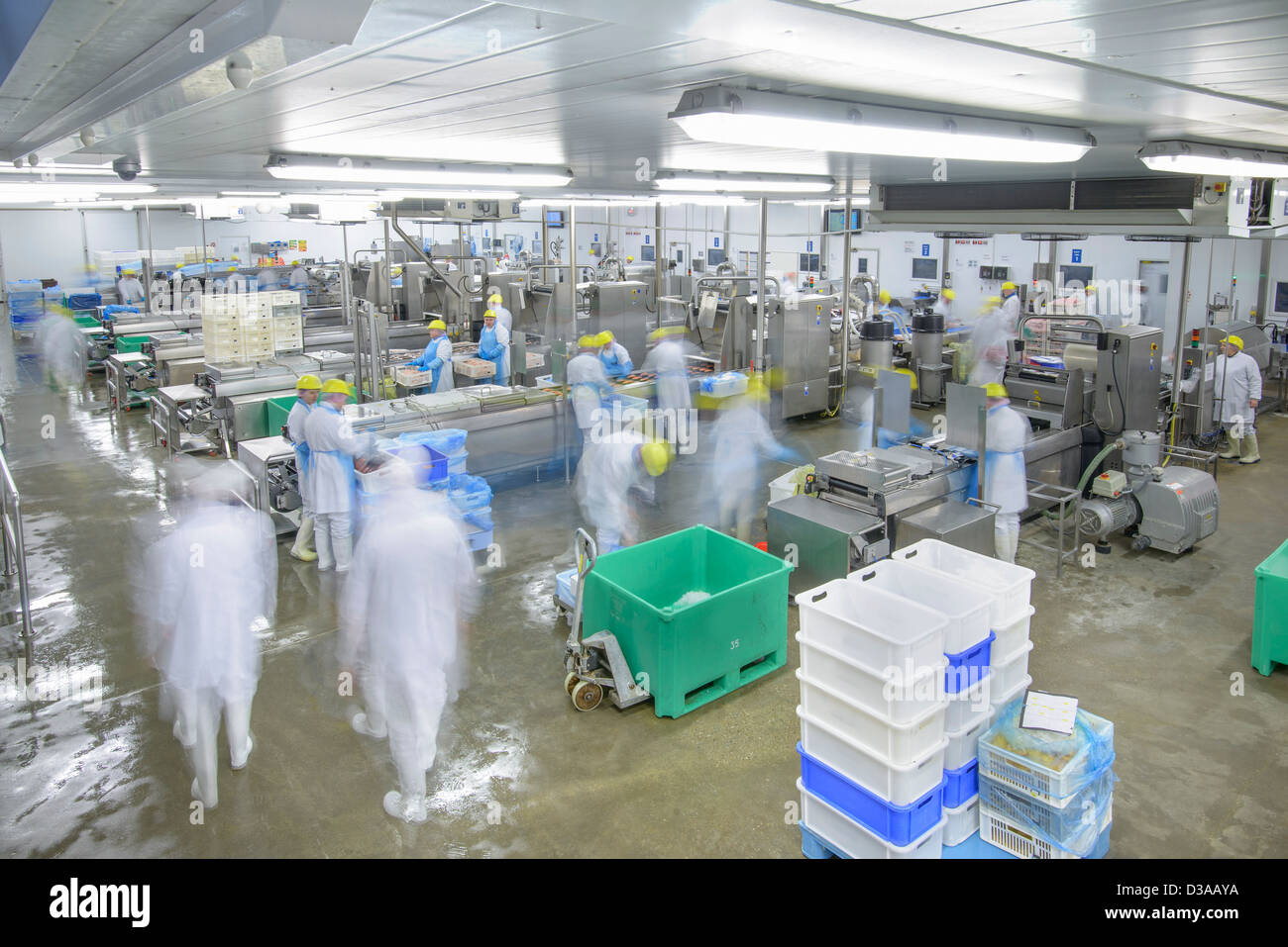 Production lines in busy food factory, blurred motion - Stock Image