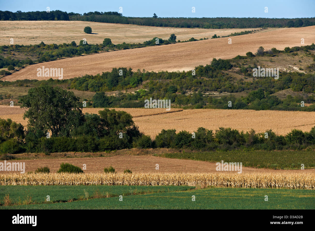 Landscape from Danube valley, Nort Bulgaria in late summer season. - Stock Image