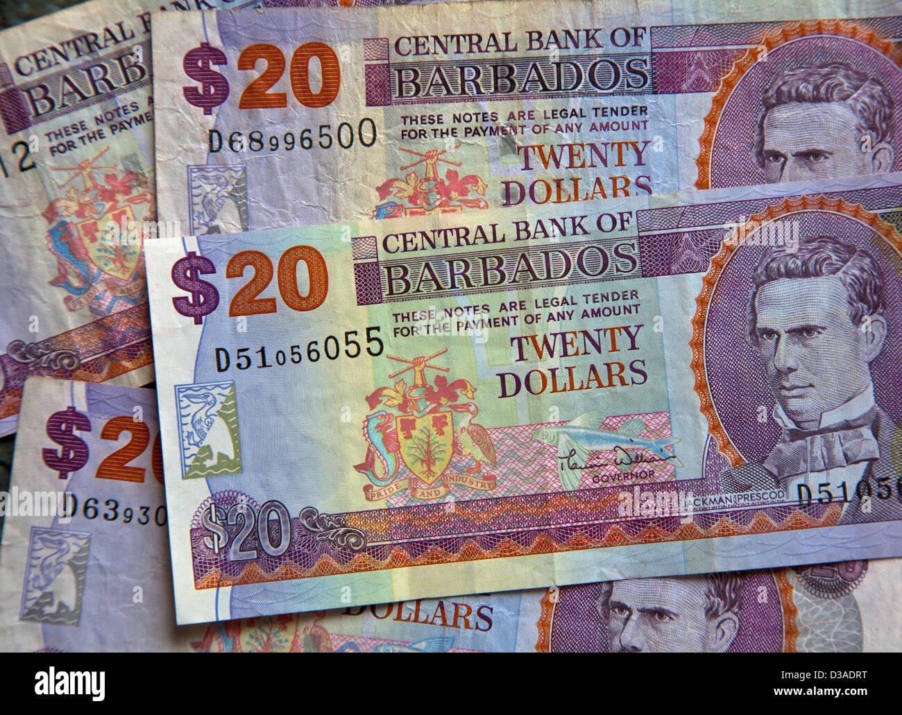 Barbados dollar banknotes - Stock Image