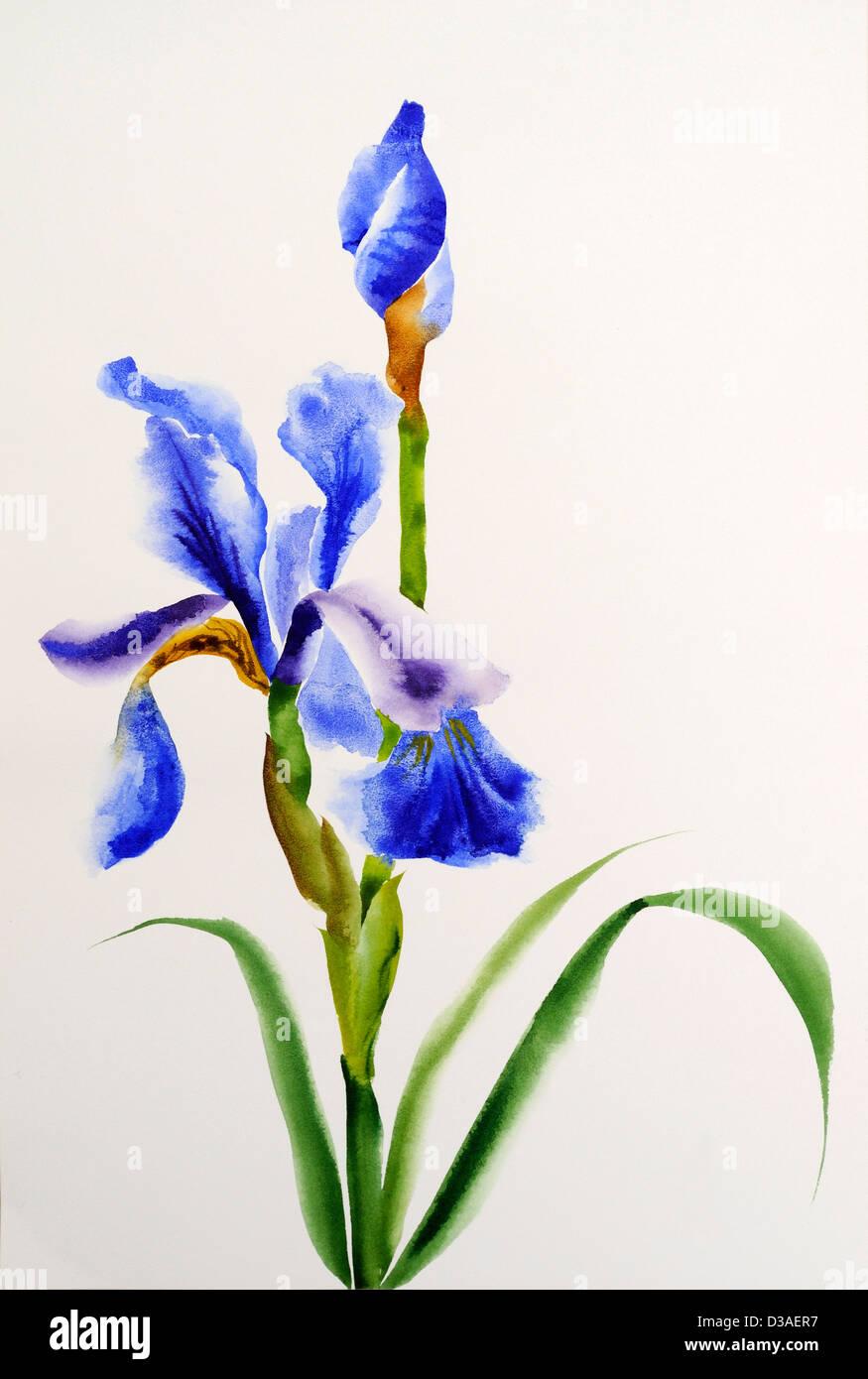 Purple watercolor flowers stock photos purple watercolor flowers blue iris flowers original watercolor painting stock image izmirmasajfo